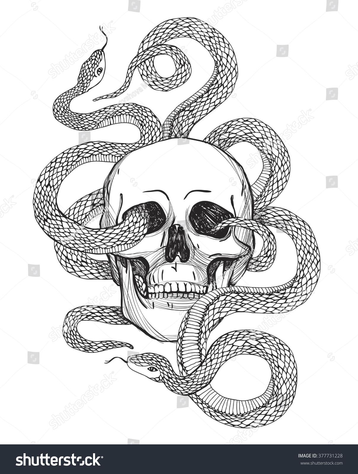 Skull Snake Tattoo Art Coloring Books Stock Vector 377731228