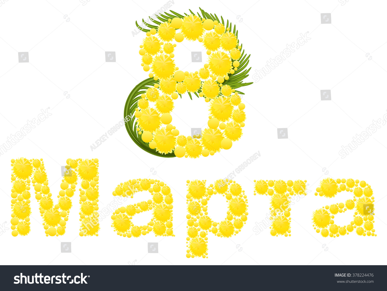 Yellow Mimosa Flower Mimosa Flower Symbol Womens Day Congratulations