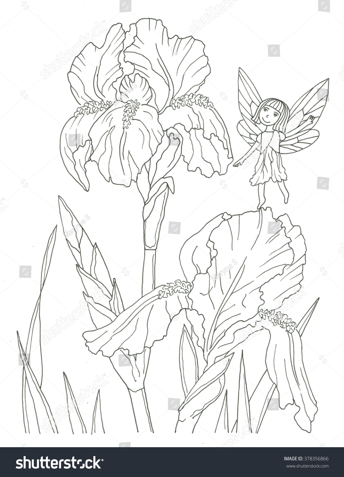 Iris Flower Fairy Coloring Page Stock Illustration 378356866 ...