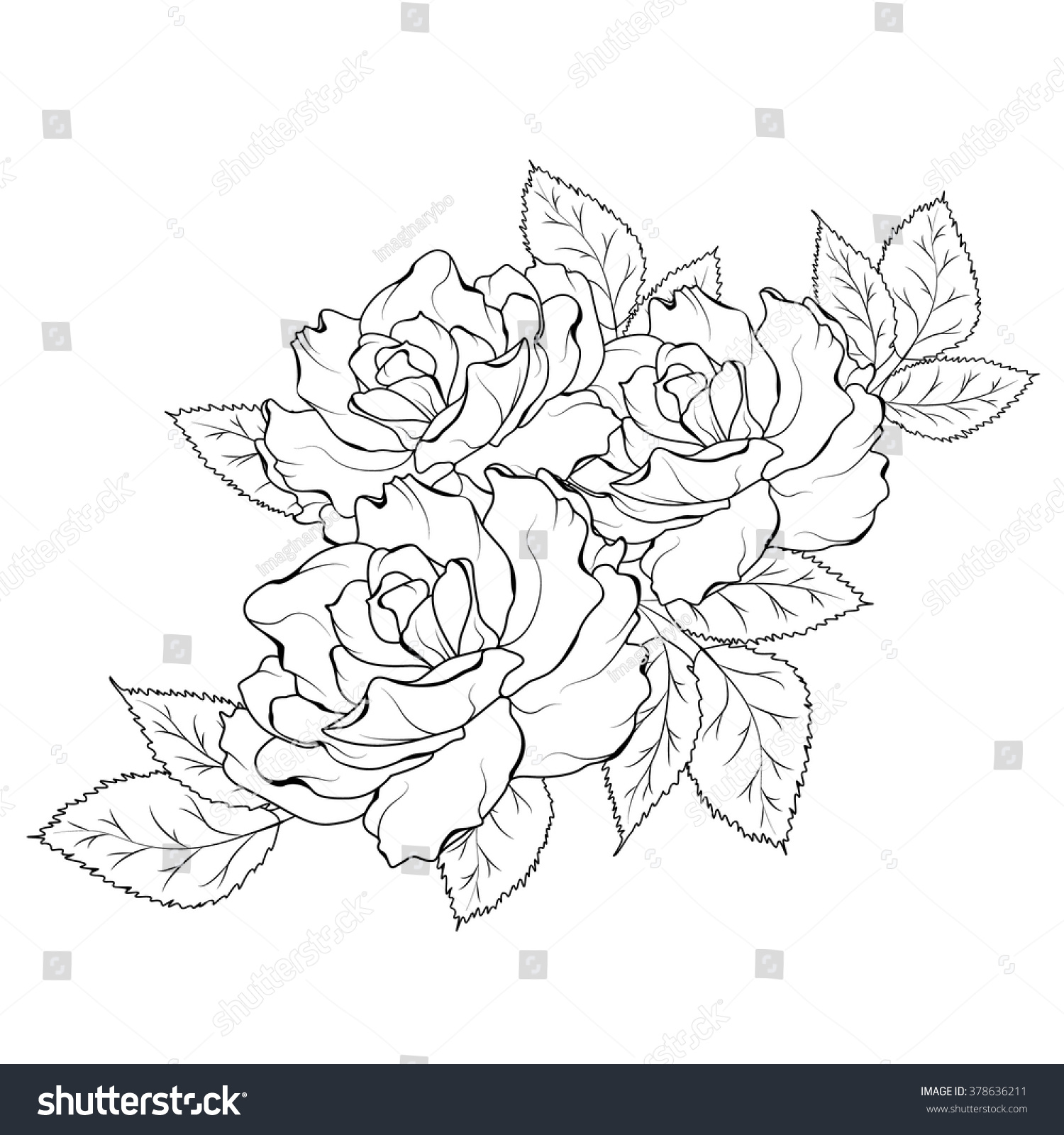 Royalty free isolated rose flowers bouquet detailed 378636211 isolated rose flowers bouquet detailed outline black and white vector illustration 378636211 izmirmasajfo