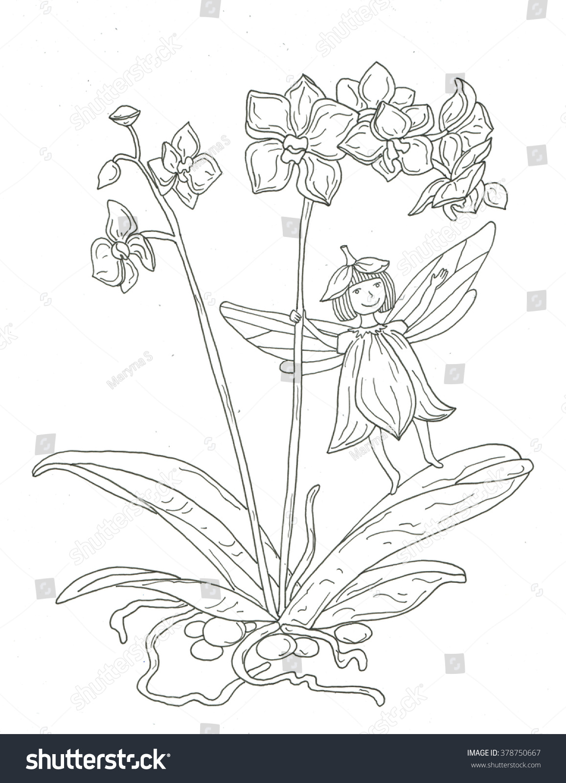 Orchid Flower Fairy Coloring Page