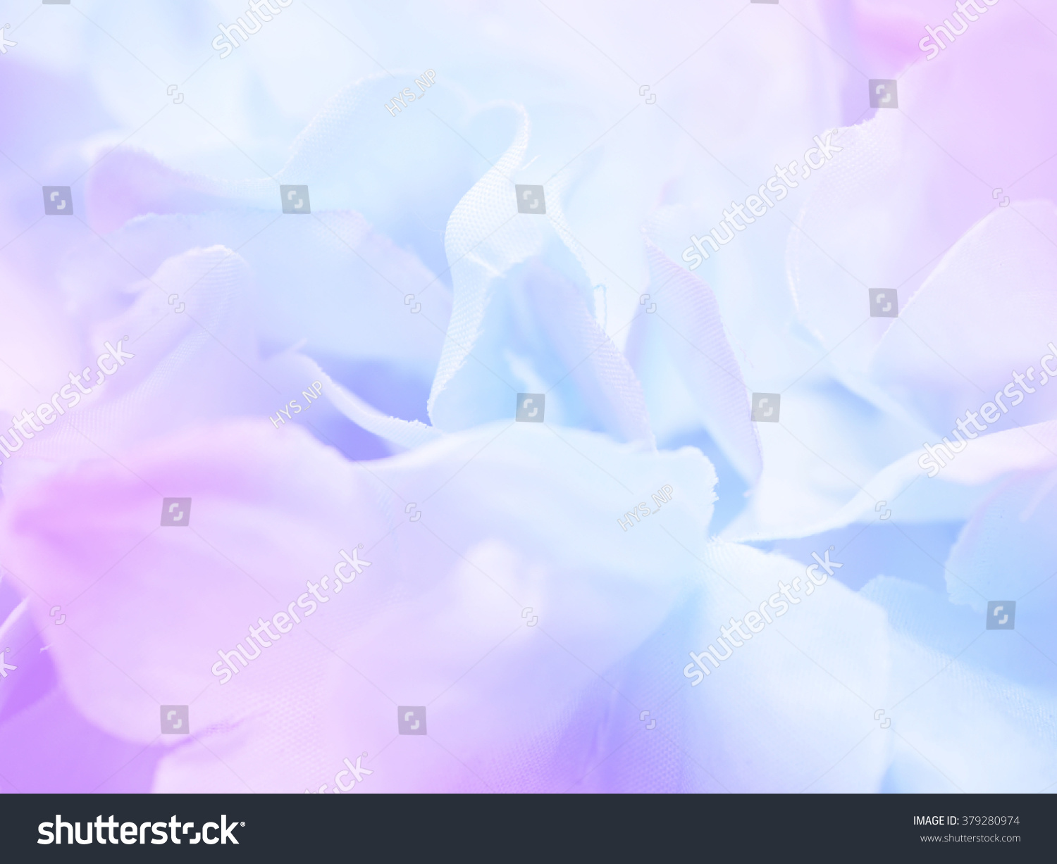 Beautiful Flower Background Wallpaper Made Blue Stock Photo Edit