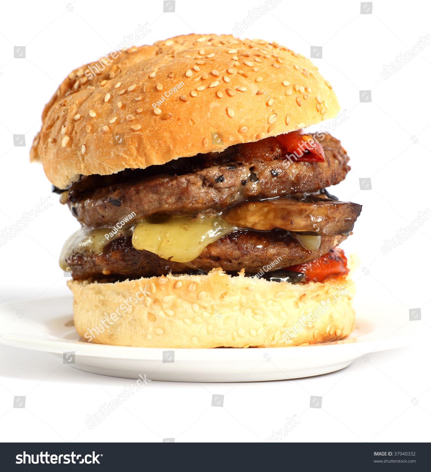 A Mushroom Burger, With Fried Tomatoes And Cheddar Cheese ...