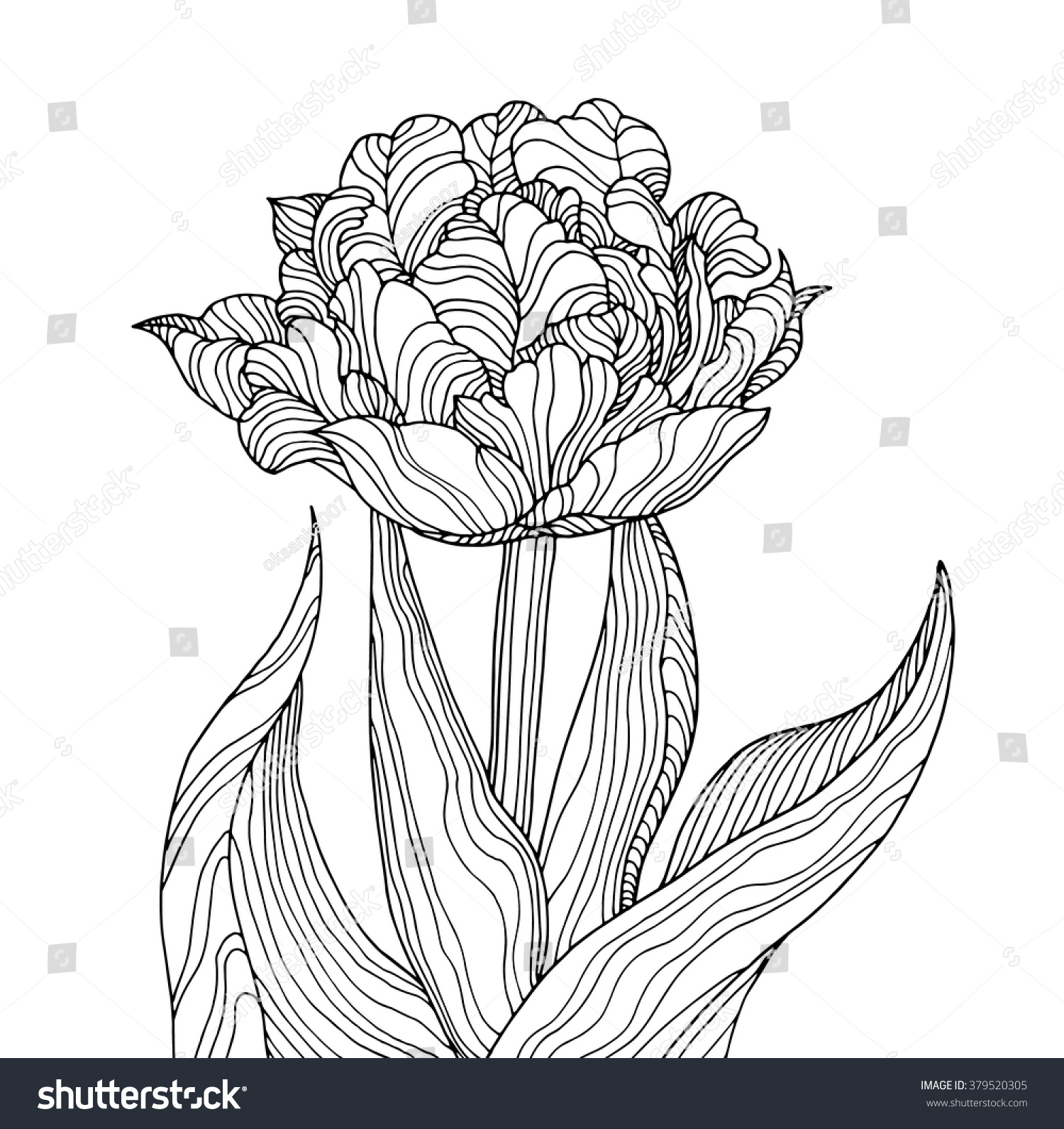 tulip flower forest plant line pattern stock vector 379520305