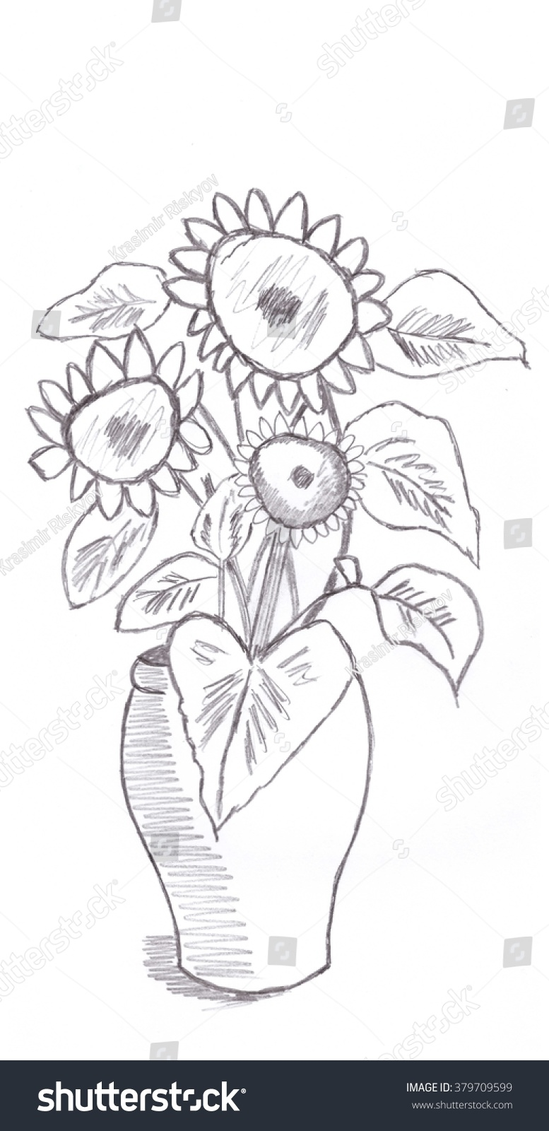 Vase sunflower sketch pencil drawing stock illustration 379709599 vase sunflower sketch pencil drawing reviewsmspy