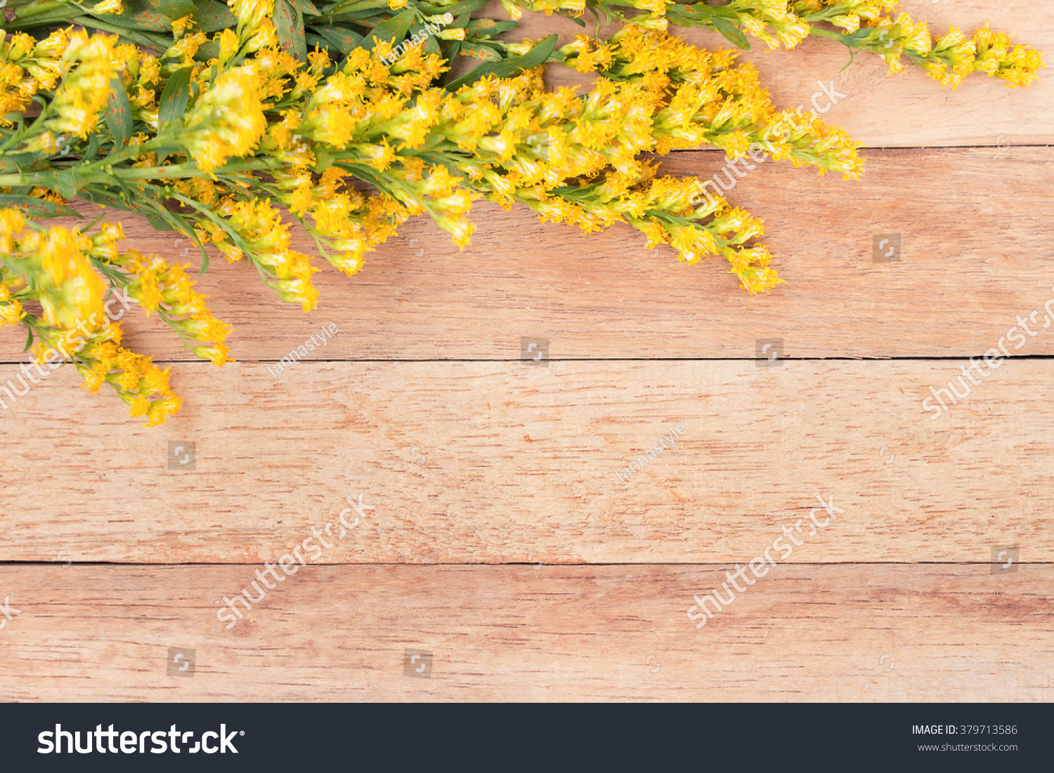 Yellow Flowers On Wooden Background Flowers On Vintage Wood