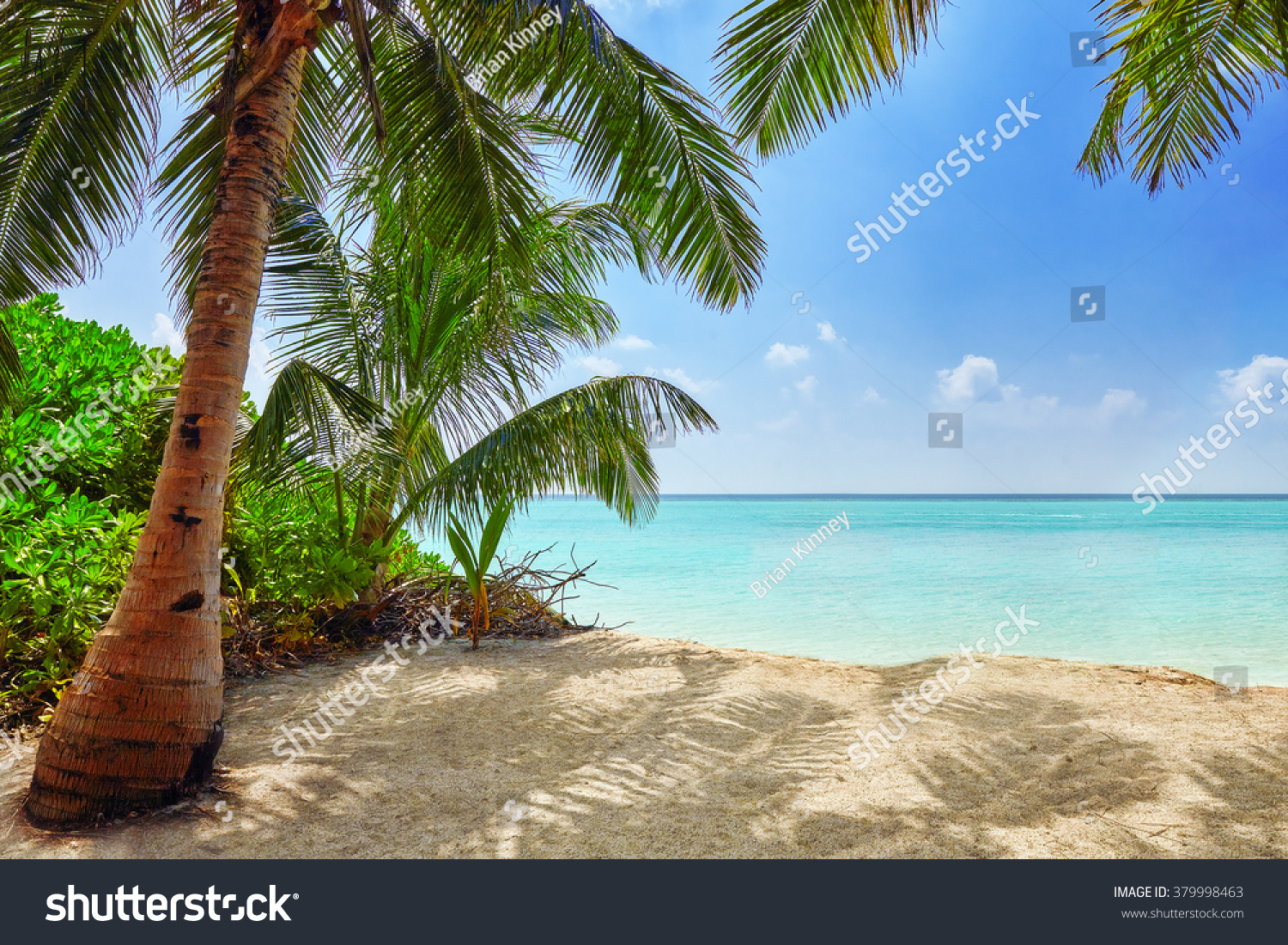 Tropical Island Beach Ambience Sound: Shoreline Tropical Island Maldives View Indian Stock Photo