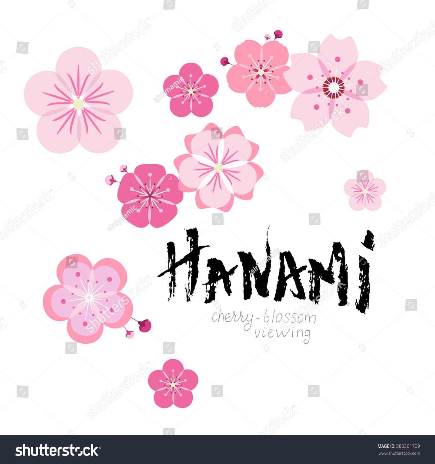 Image Gallery hanami vector