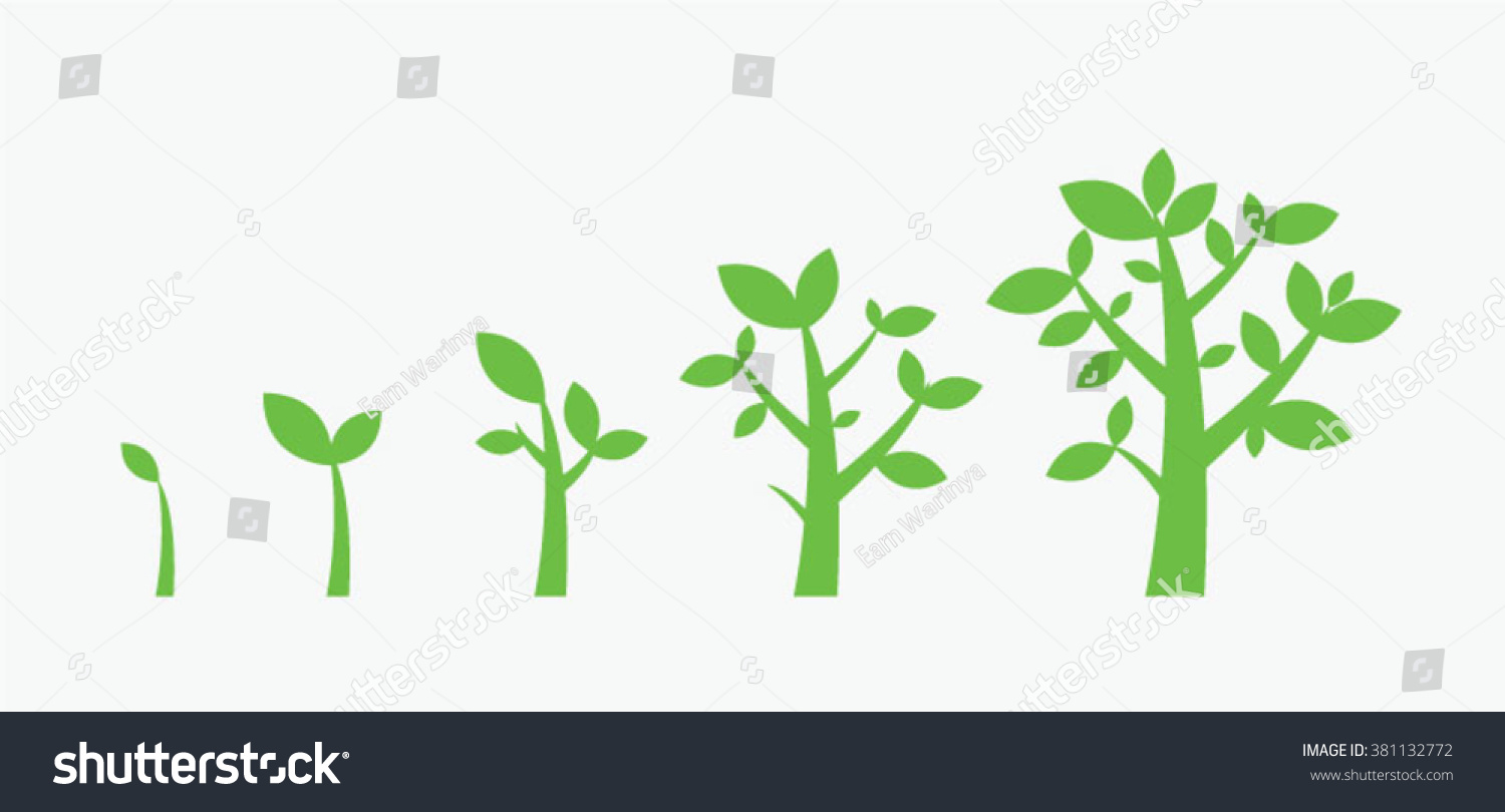Trees Growth Stock Vector 381132772 Shutterstock