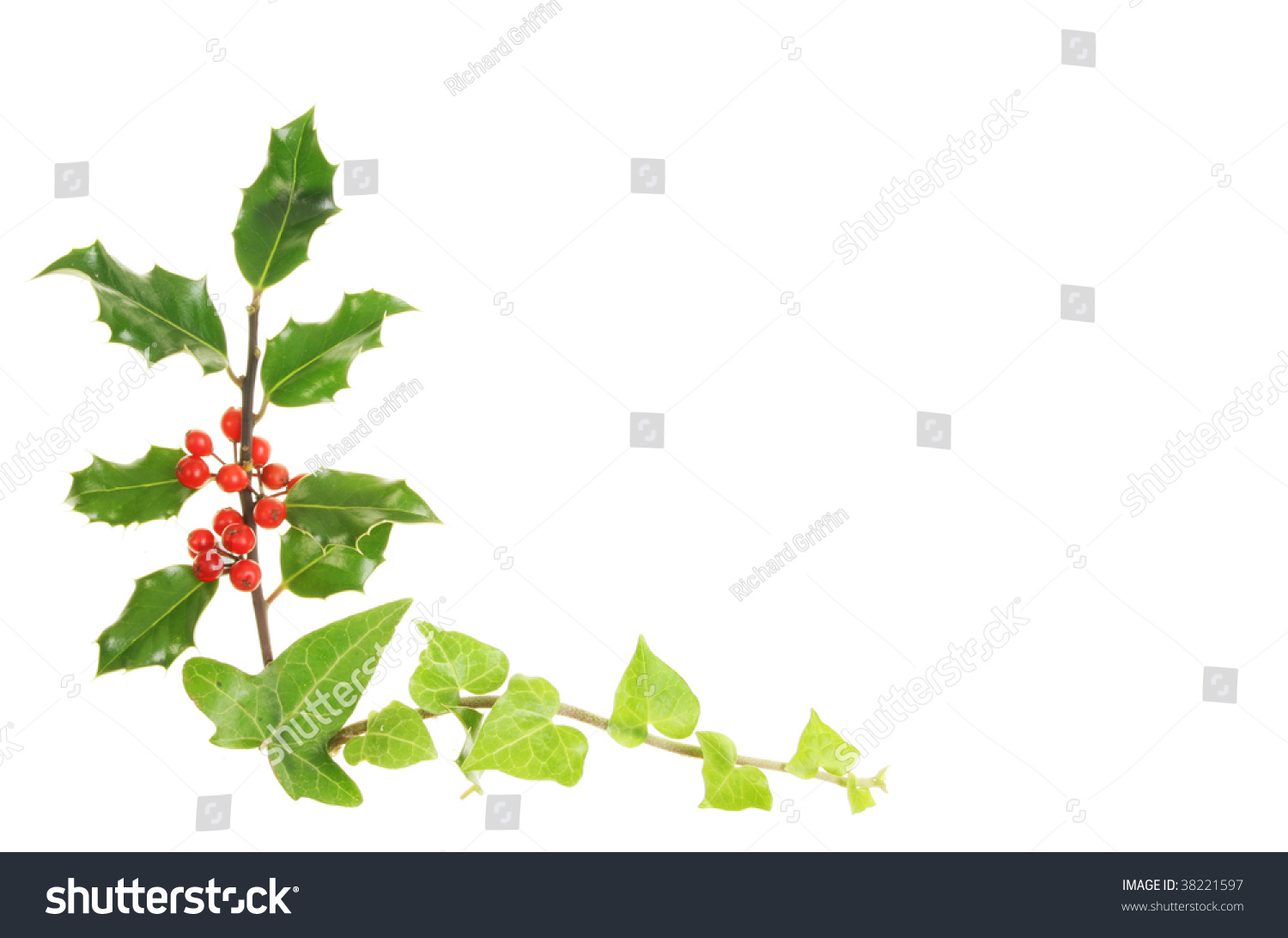 Holly and ivy christmas border stock photo 38221597 shutterstock for Holly and ivy border