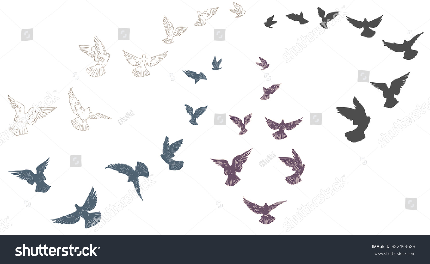 Set of sketches of flying swallows stock vector illustration -  Vectors Illustrations Footage Music Flying Pigeons Flock Of Birds Flying Up Group Flight Of Pigeon