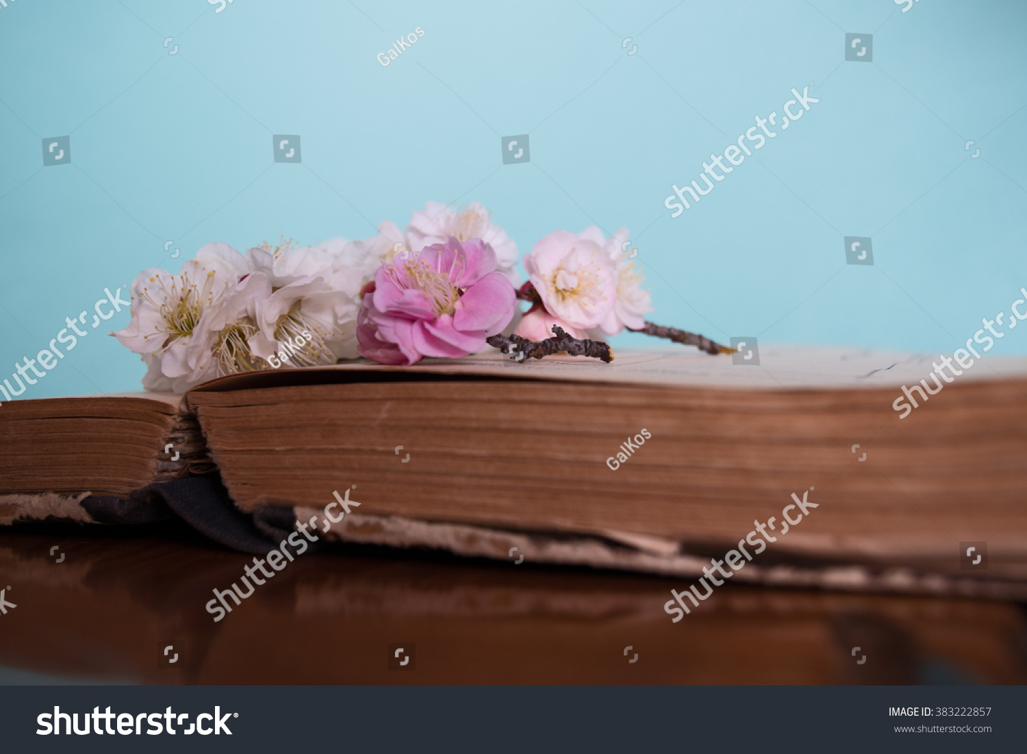 Spring Flowering Old Books On Wooden Stock Photo Edit Now