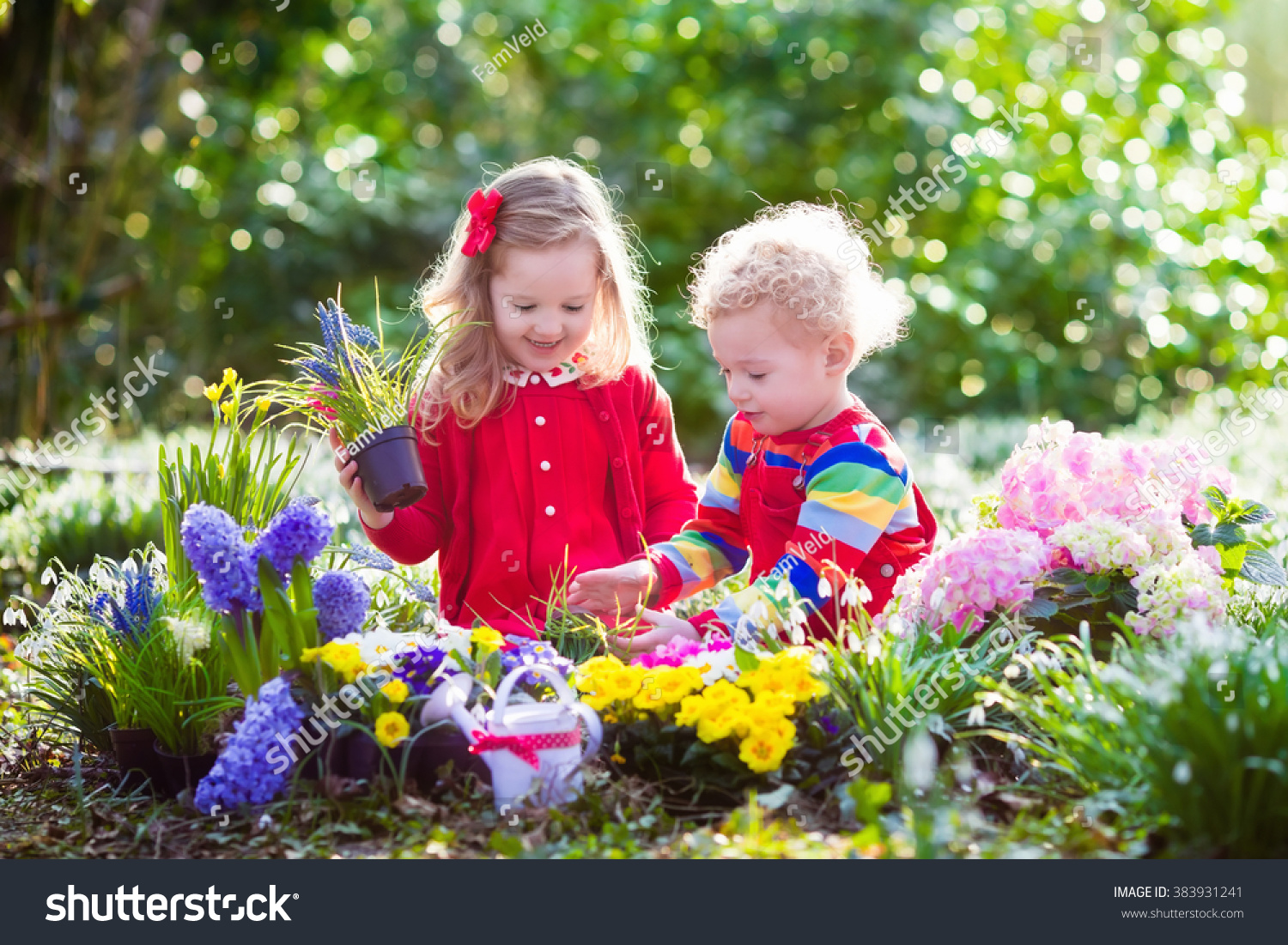 Royalty Free Children Planting Spring Flowers In 383931241 Stock