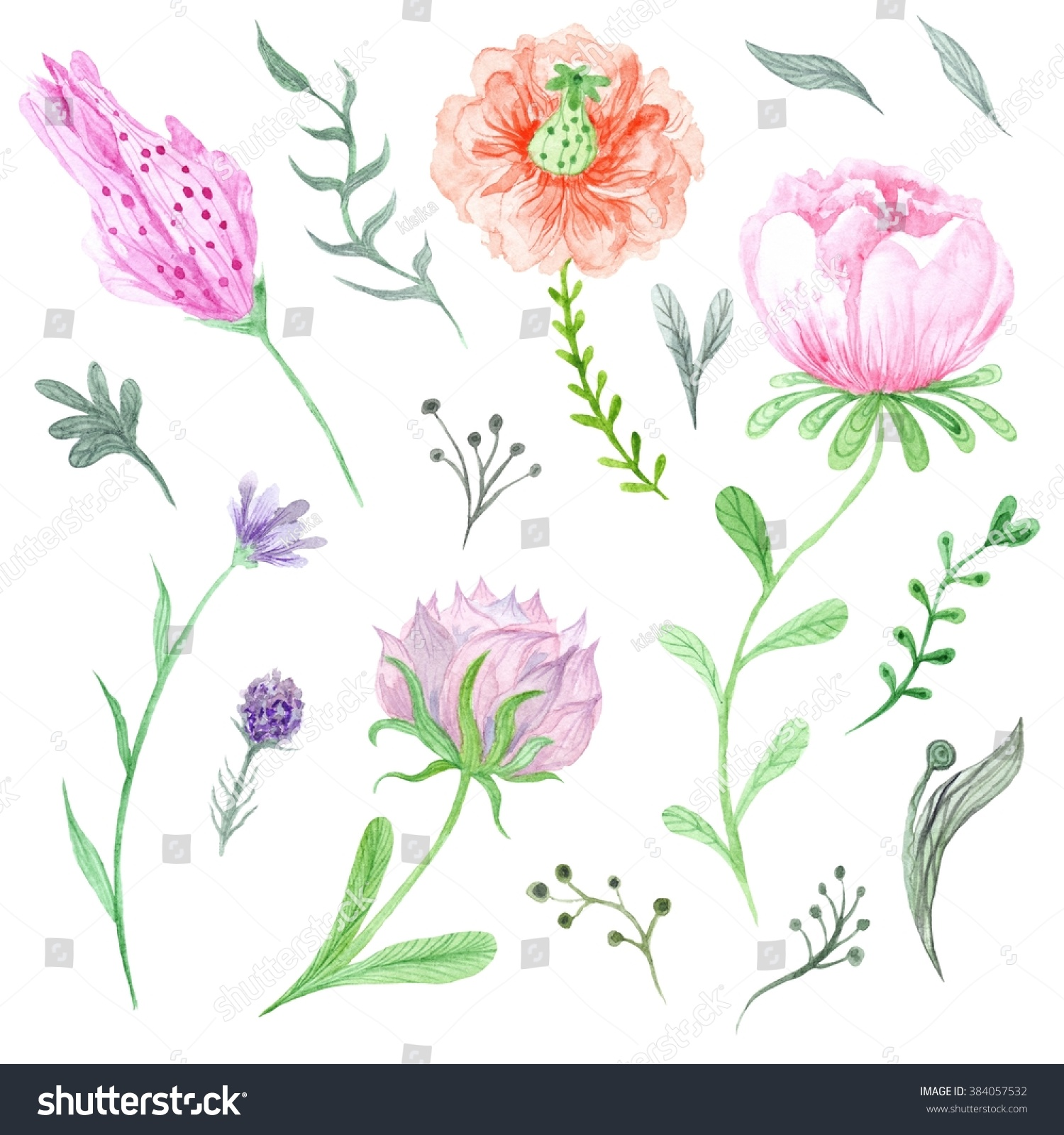 Set Watercolor Spring Flowers Leaves Beautiful Stock Illustration