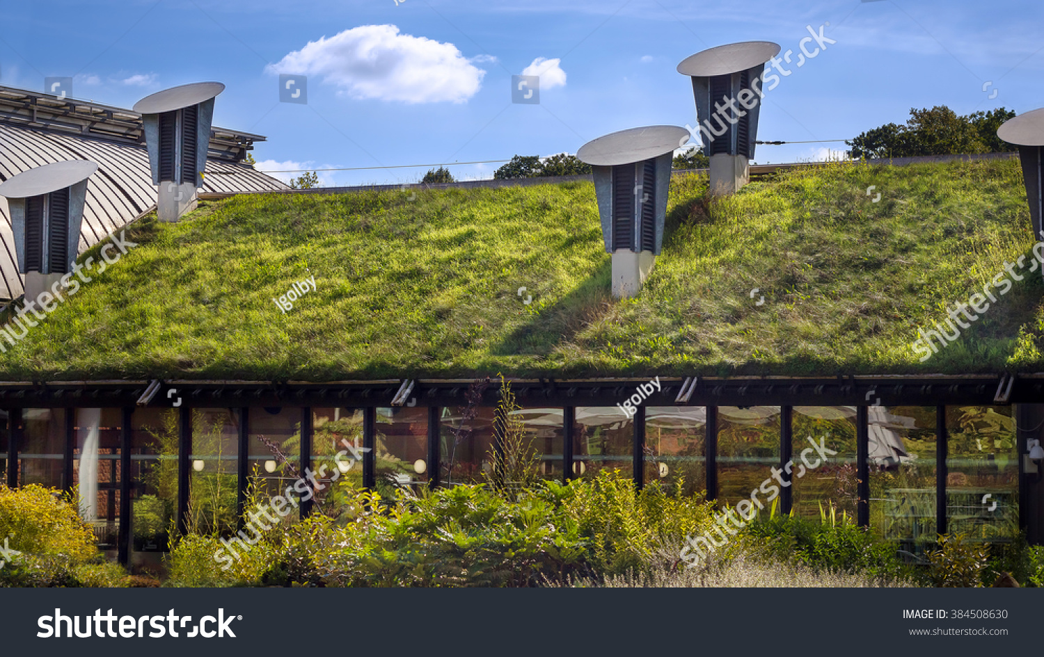 Green living roof on public city stock photo 384508630 for Eco green builders