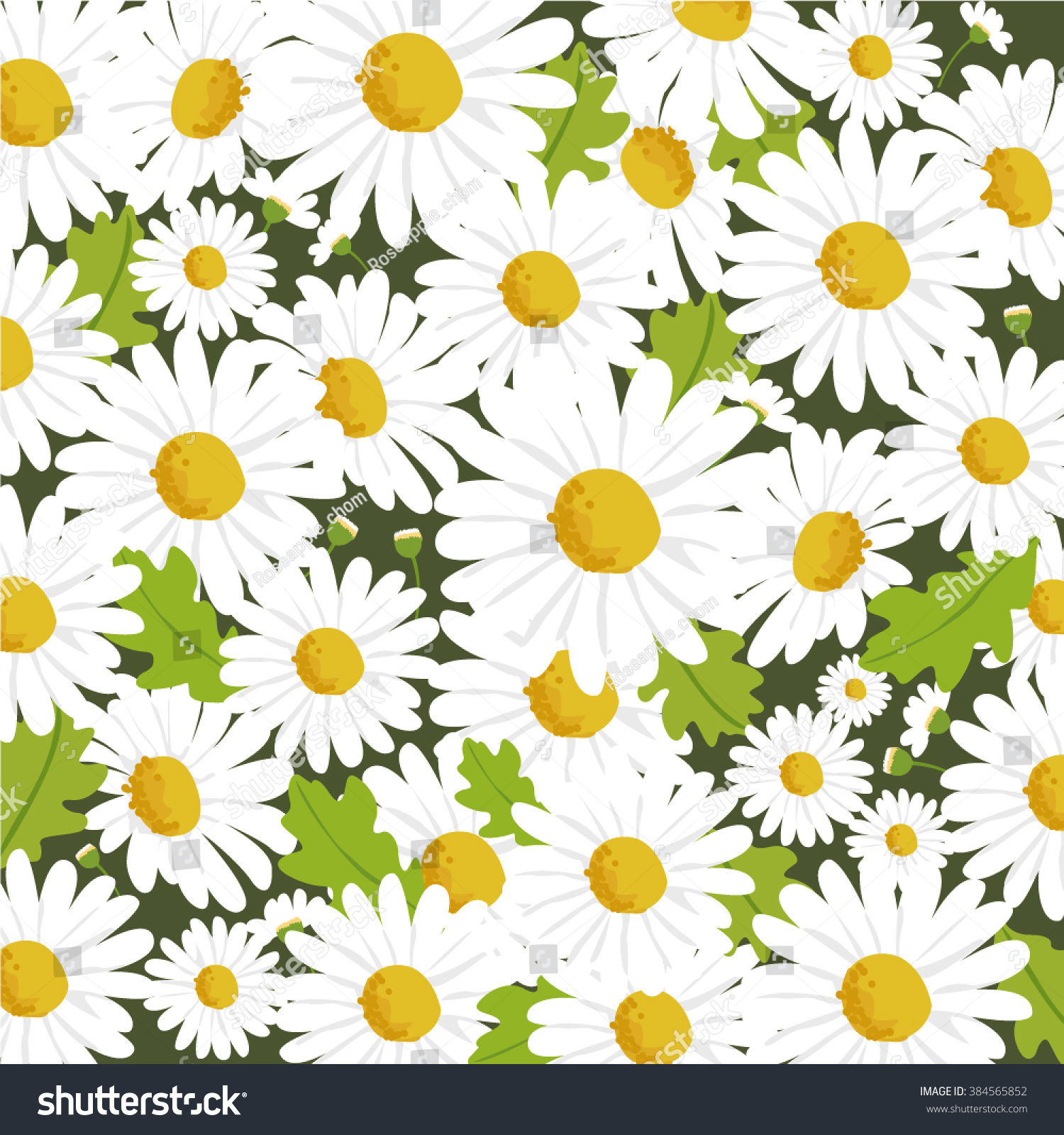 Daisy Flower Background Vector Stock Vector Royalty Free 384565852