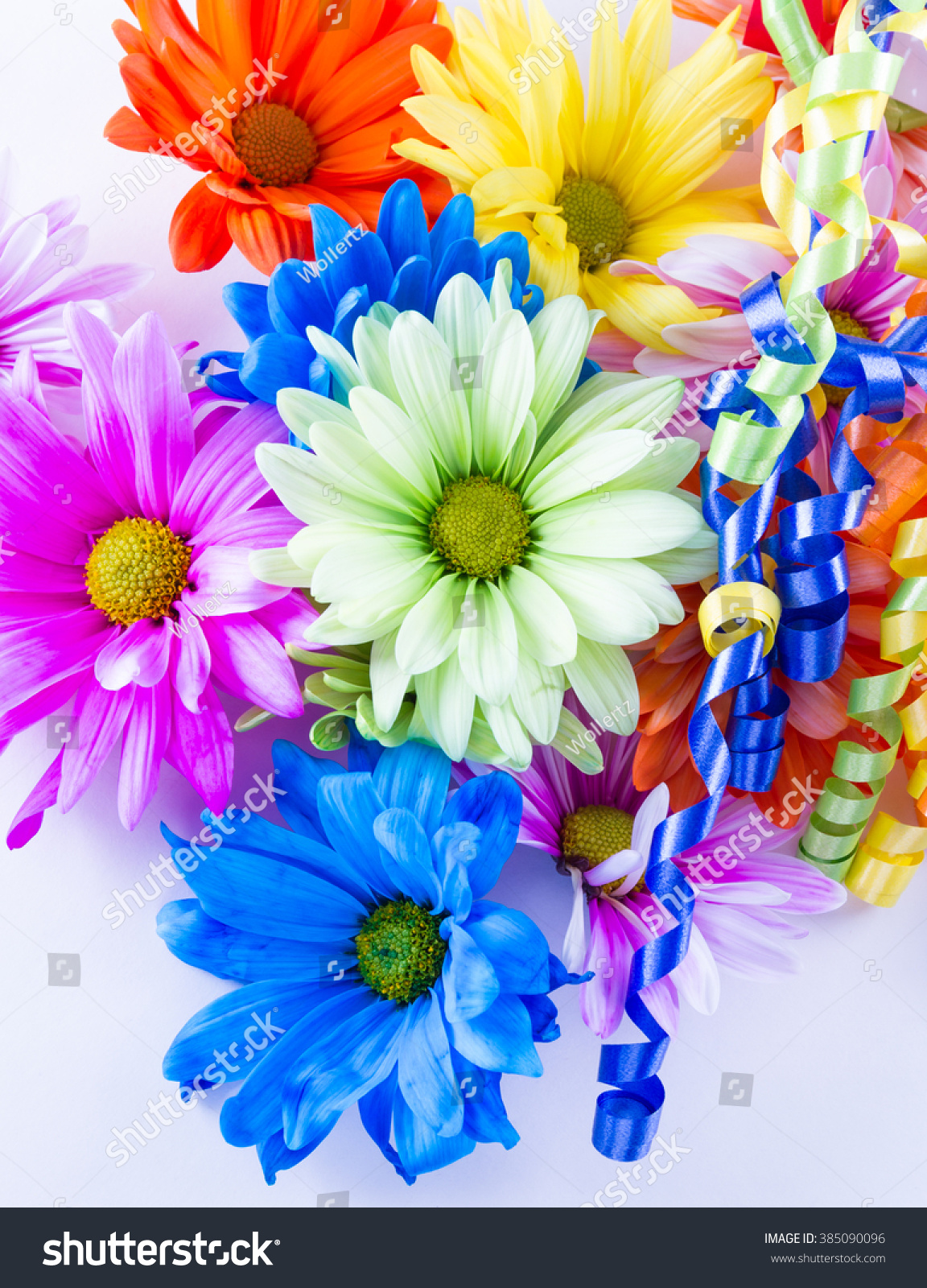 Beautiful Bright Spring Flowers Pastel Colors Stock Photo Edit Now