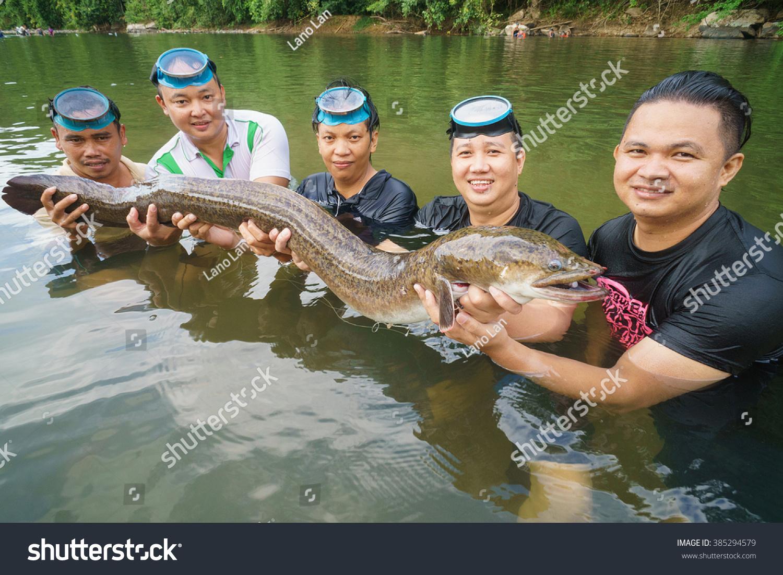 Freshwater fish malaysia - Kiulu Sabah Malaysia Mar 3 2016 Group Of Local Man Catch Freshwater