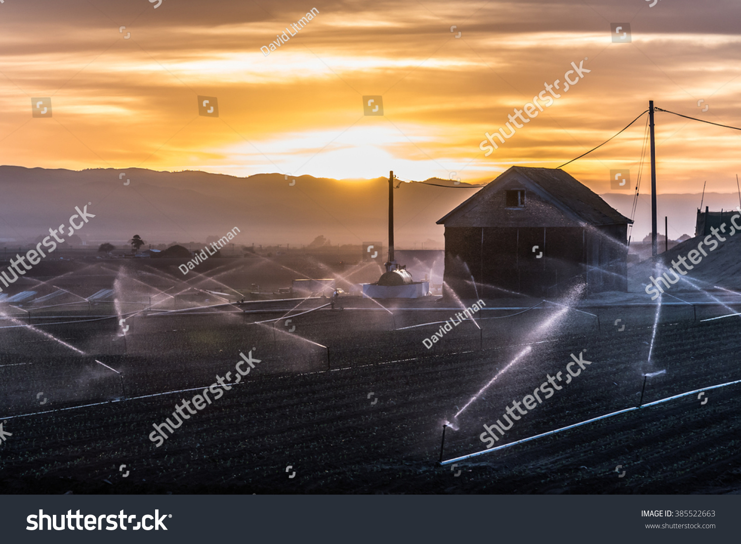 A barn at sunrise in the Salinas Valley, the hub of agriculture in central California, as freshly planted crops are sprayed with water.