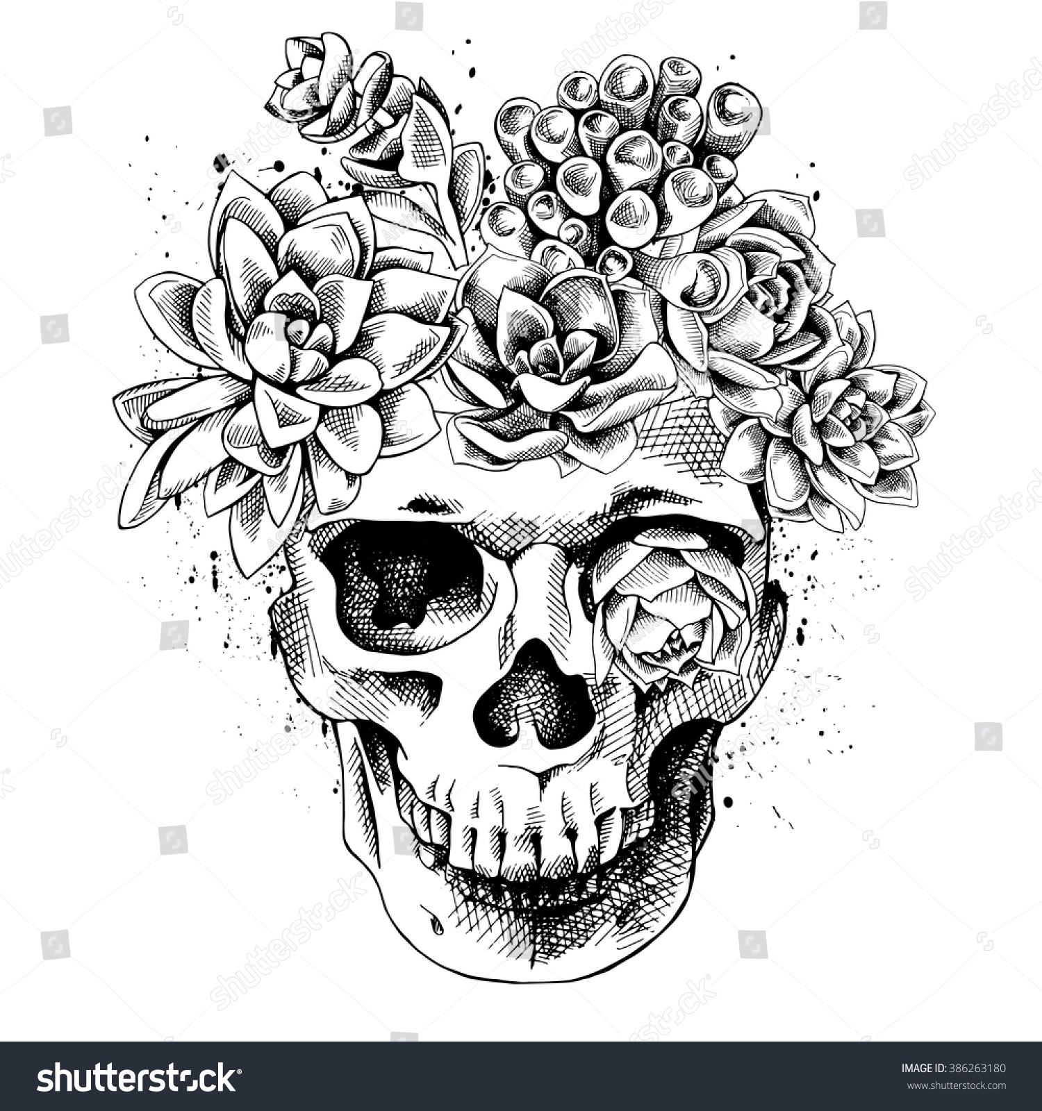 Skull Succulent Plants Vector Illustration Stock Vector Royalty Free 386263180