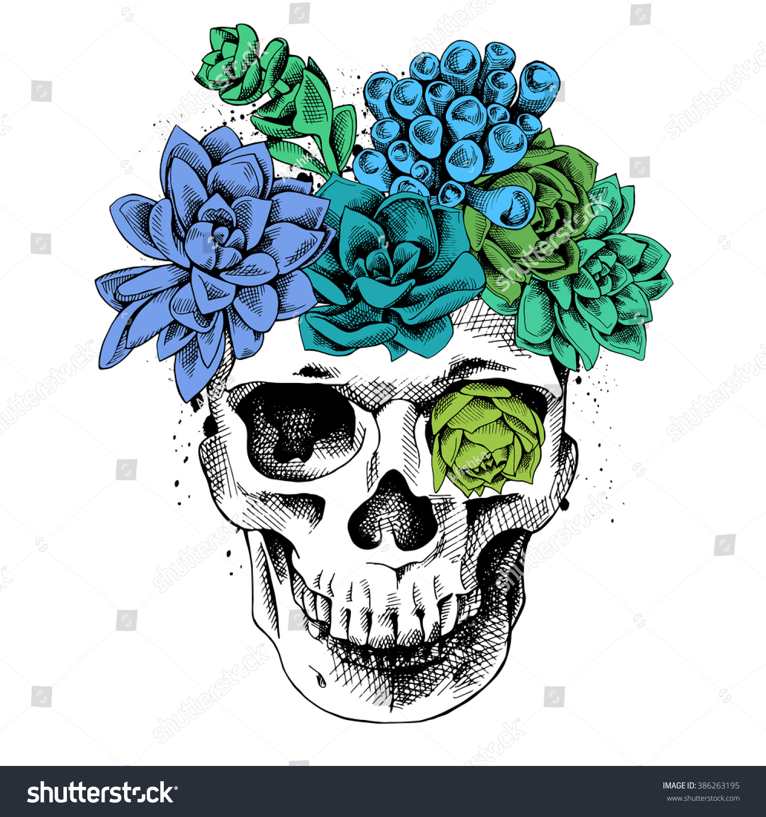 Skull Bright Color Succulent Plants Vector Stock Vector Royalty Free 386263195