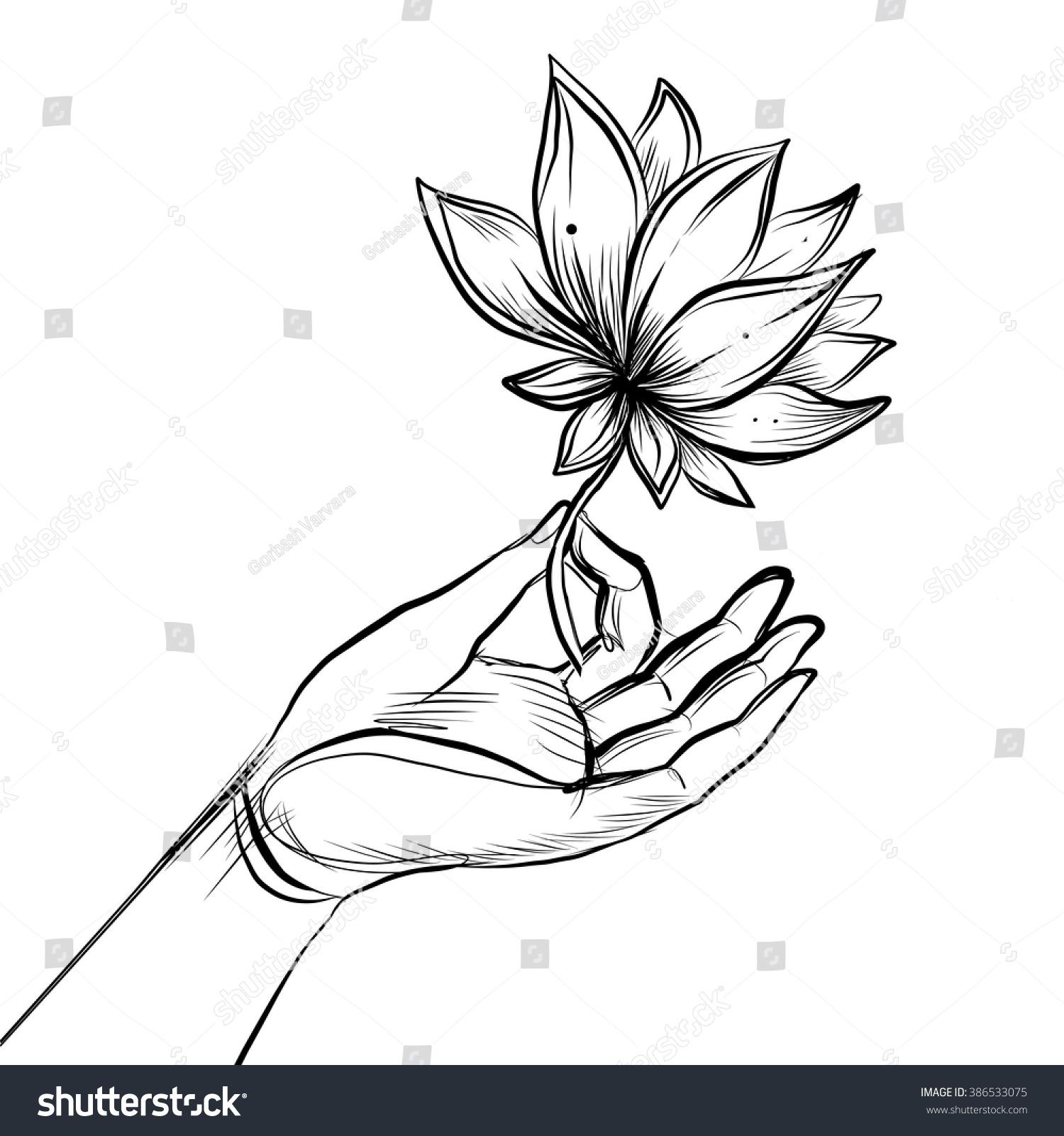 Lord buddhas hand holding lotus flower stock vector 386533075 lord buddhas hand holding lotus flower isolated vector illustration of mudra hindu motifs dhlflorist Gallery
