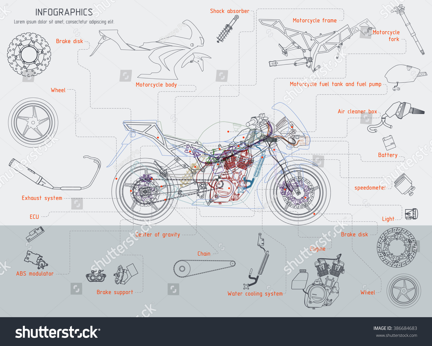 Motorcycle Structure Parts Diagramme Vector Illustration Stock ...