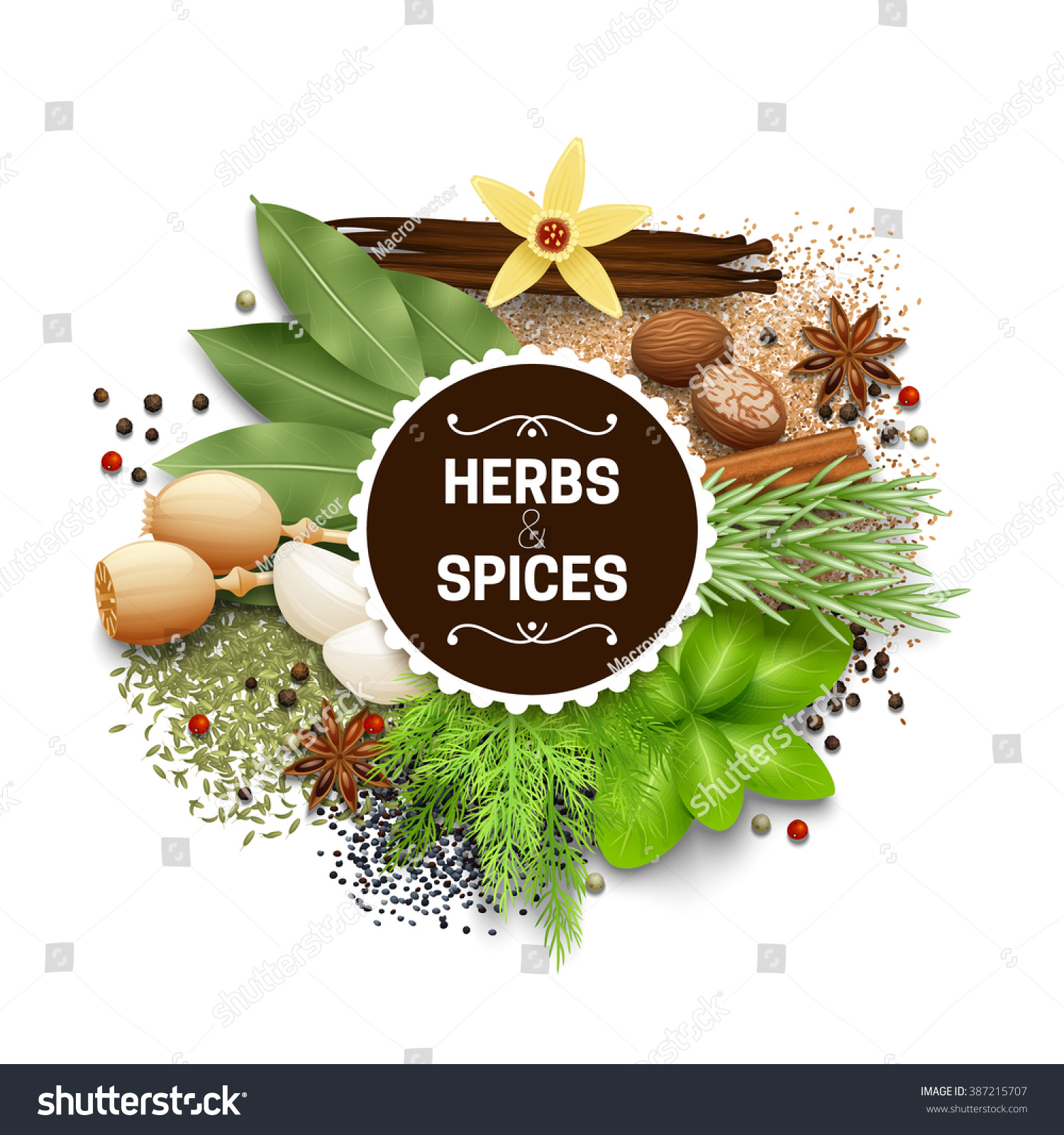 Illustration Set Different Types Herbs Spices Stock Vector