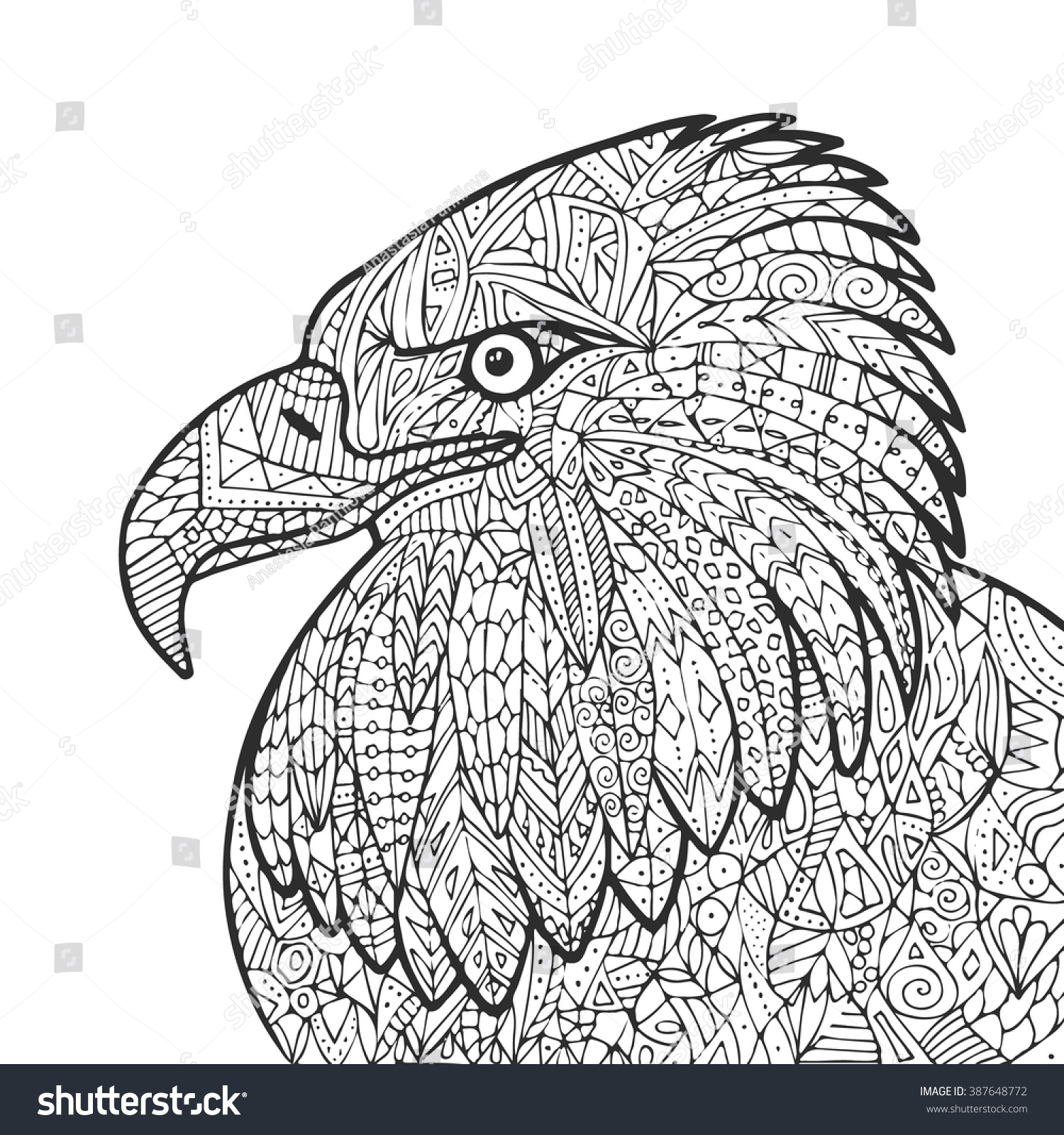 Vector Hand Drawn Eagle Bird Illustration For Adult Coloring Book