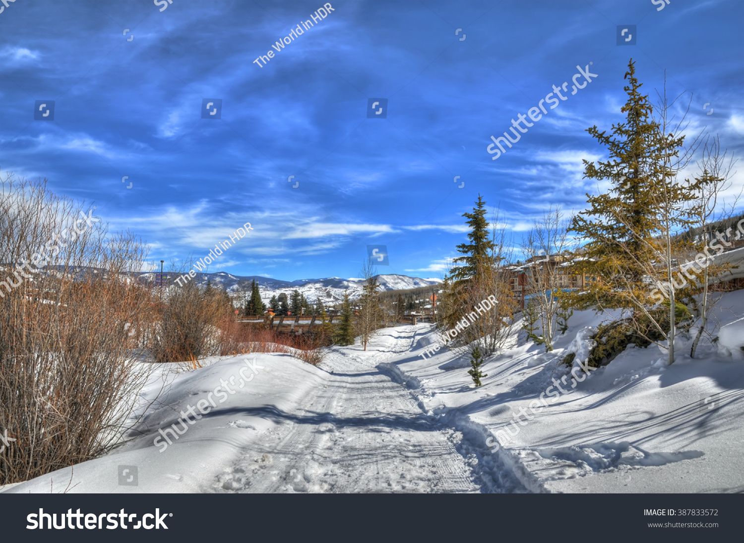 Colorful view of cross-country skiing path in beautiful winter landscape in Aspen Colorado with blue HDR sky USA