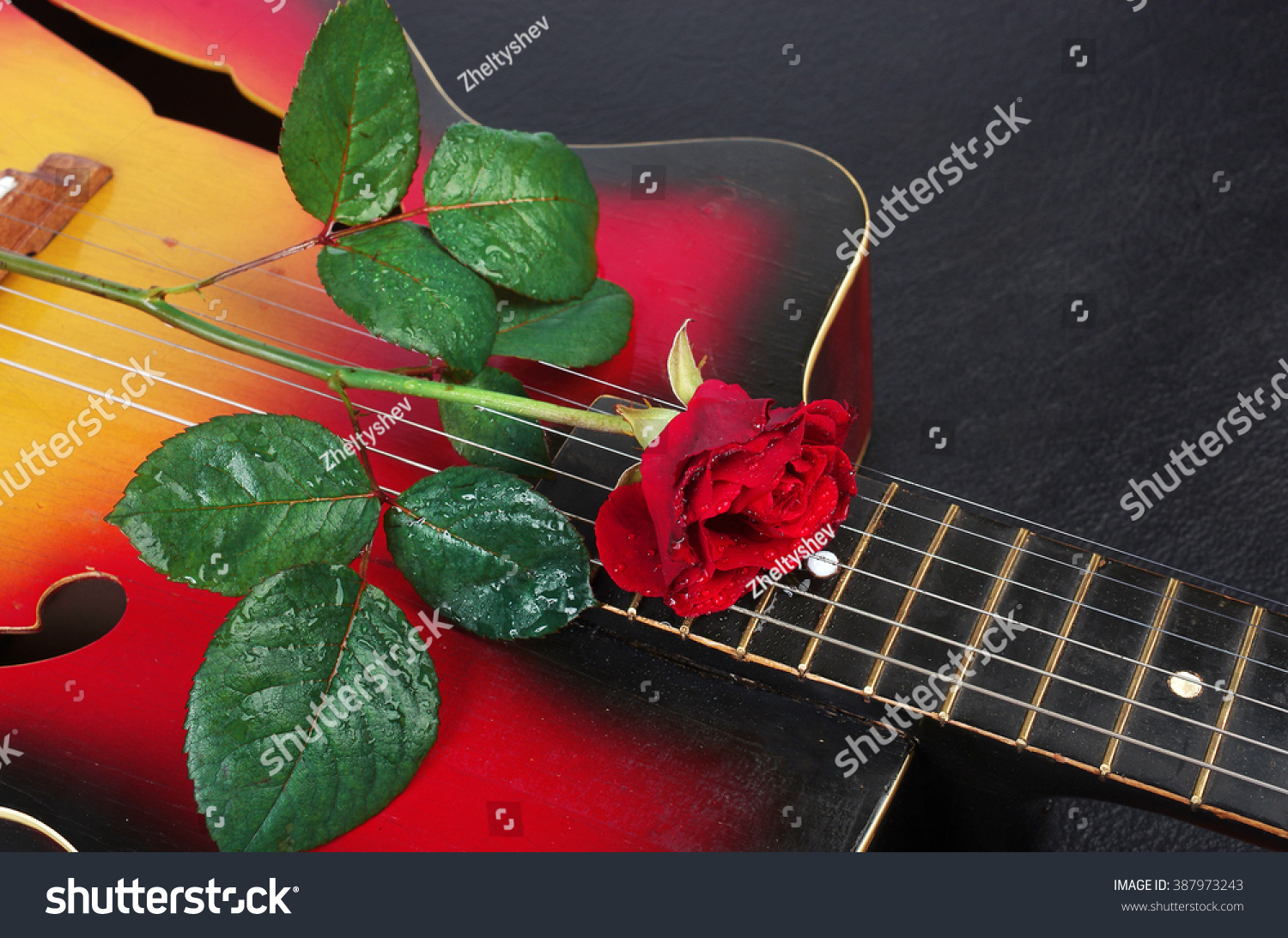 Acoustic Guitar And Red Rose