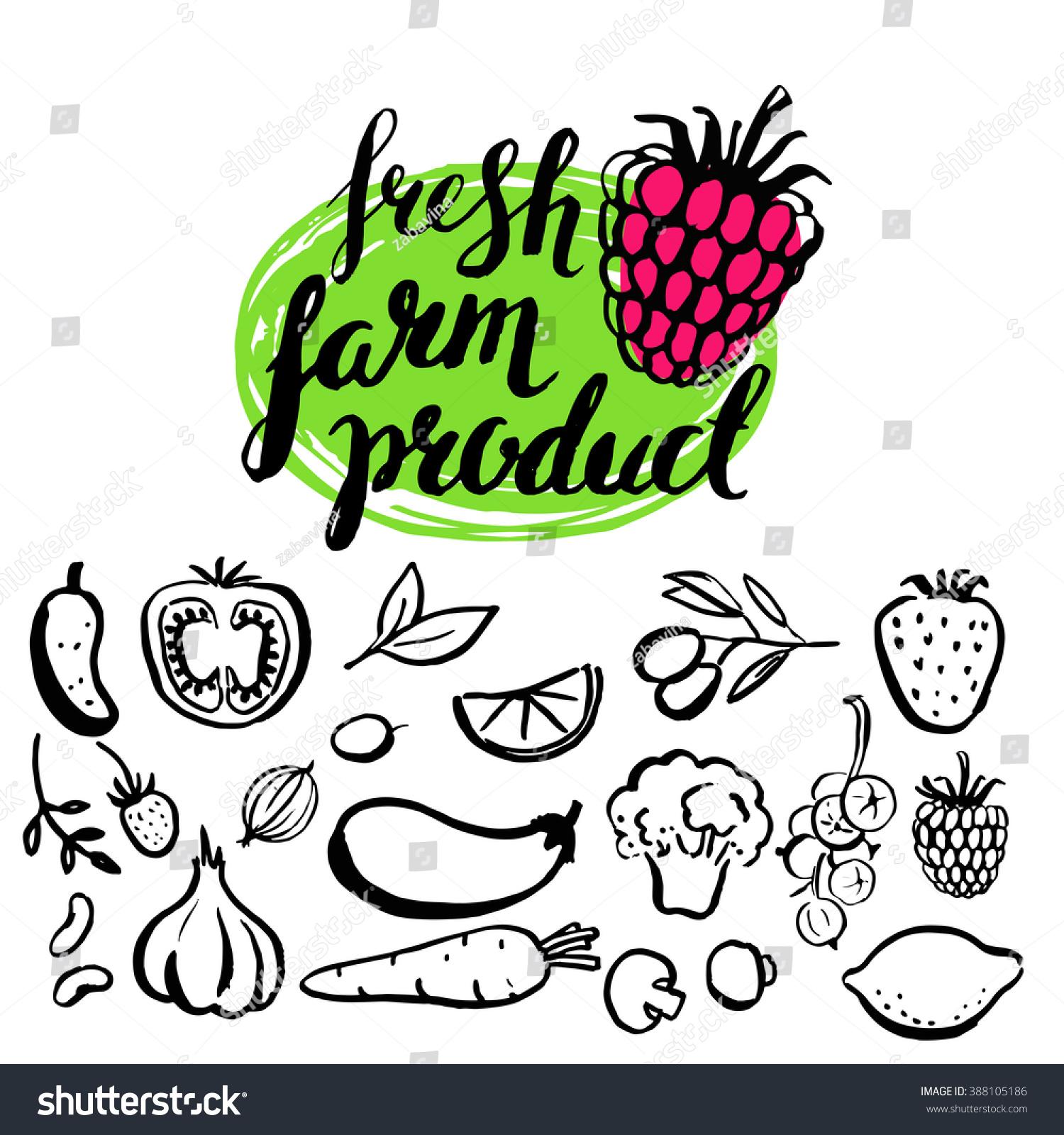 Handwritten Food Elements Logo Healthy Natural Stock Illustration ...