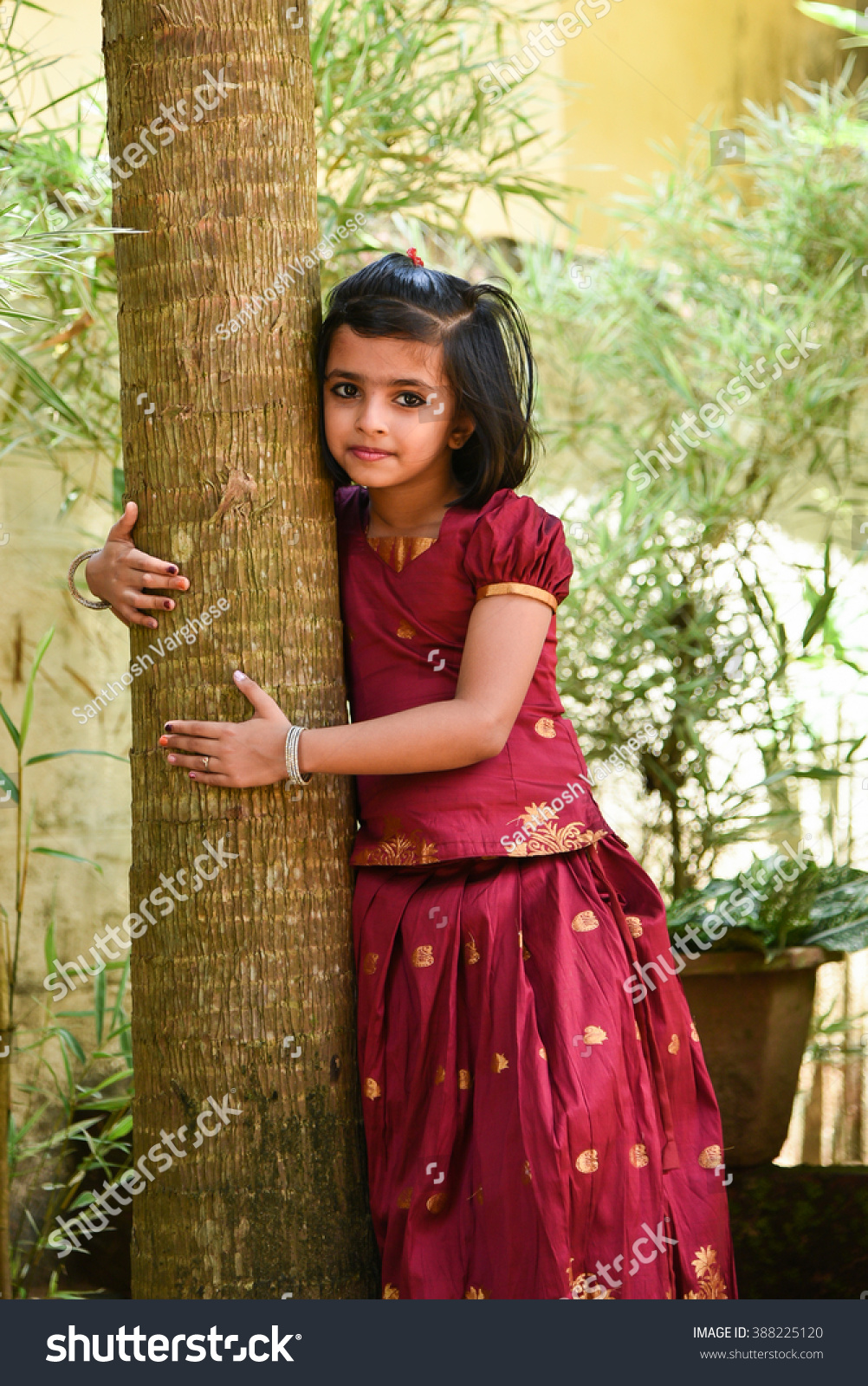 9bfa629e097a Royalty-free Young Indian girl kids wearing…  388225120 Stock Photo ...