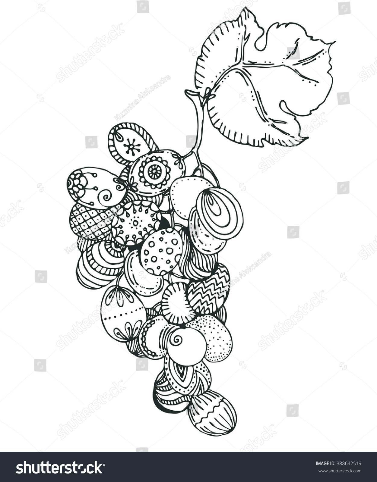 Hand Drawn Vector Doodle Grapes Sketch Stock Vector 388642519 ...