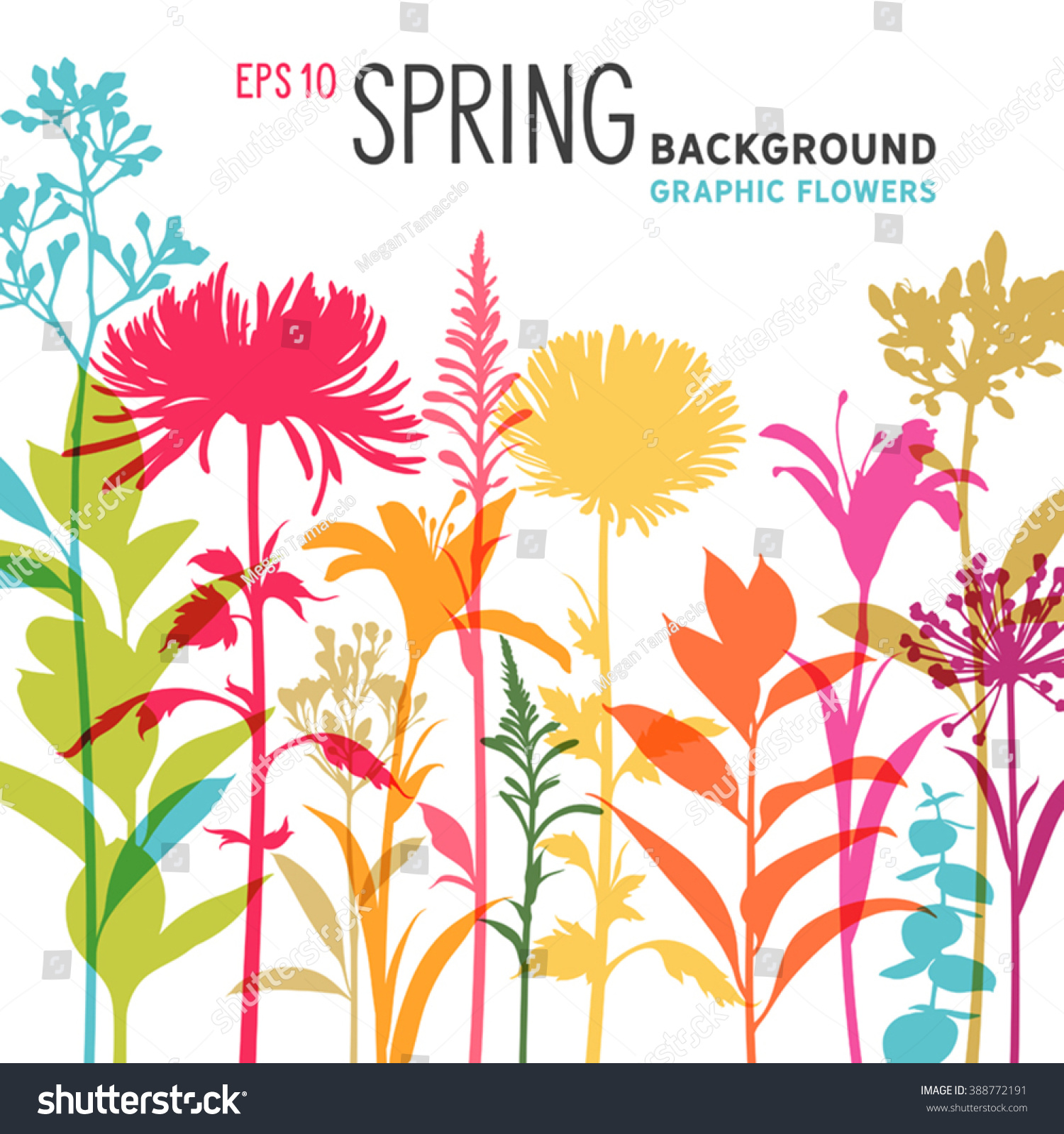 Spring Floral Background Border Flowers Branches Stock Vector