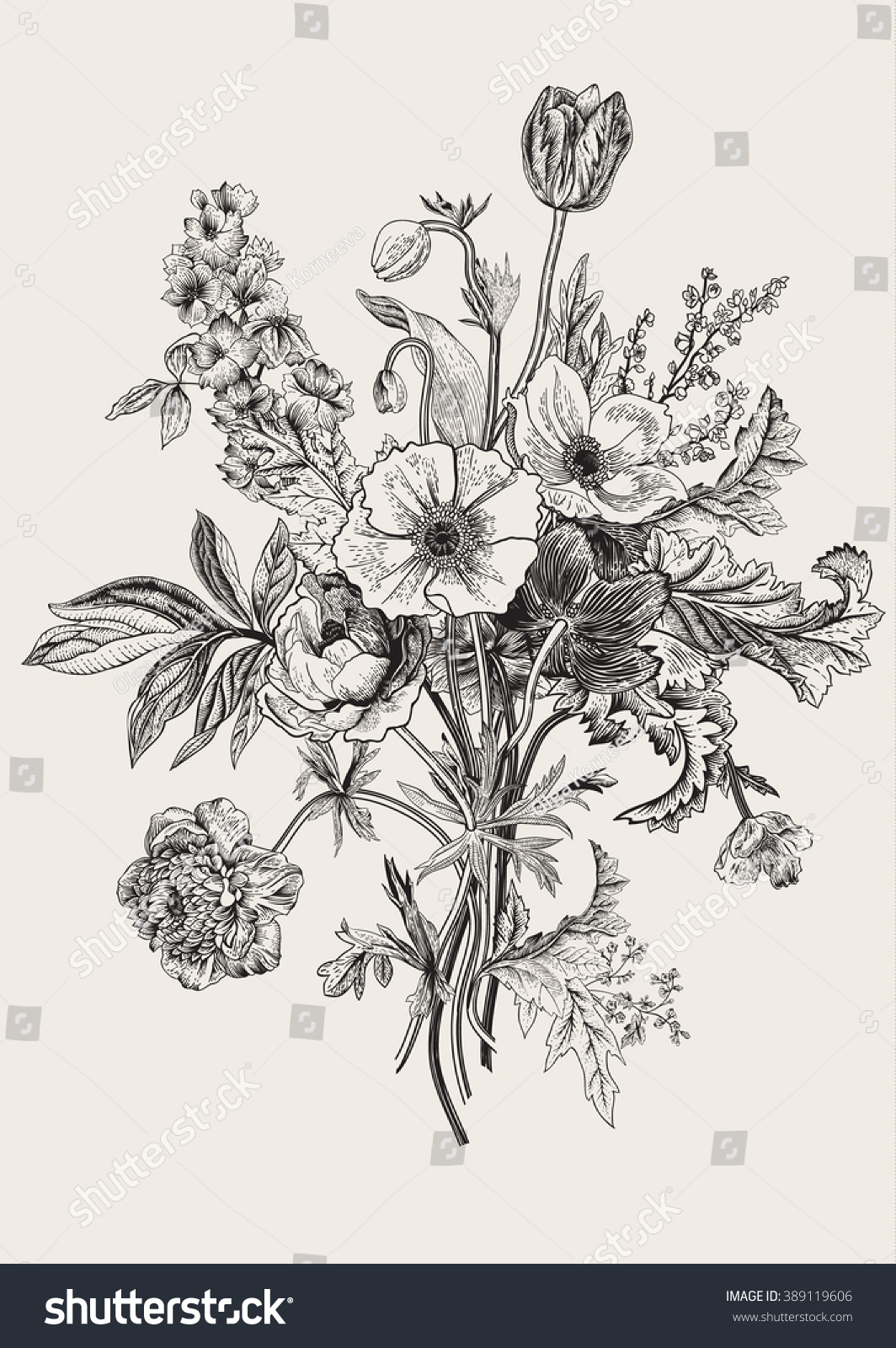 Botanical illustration black and white - photo#8