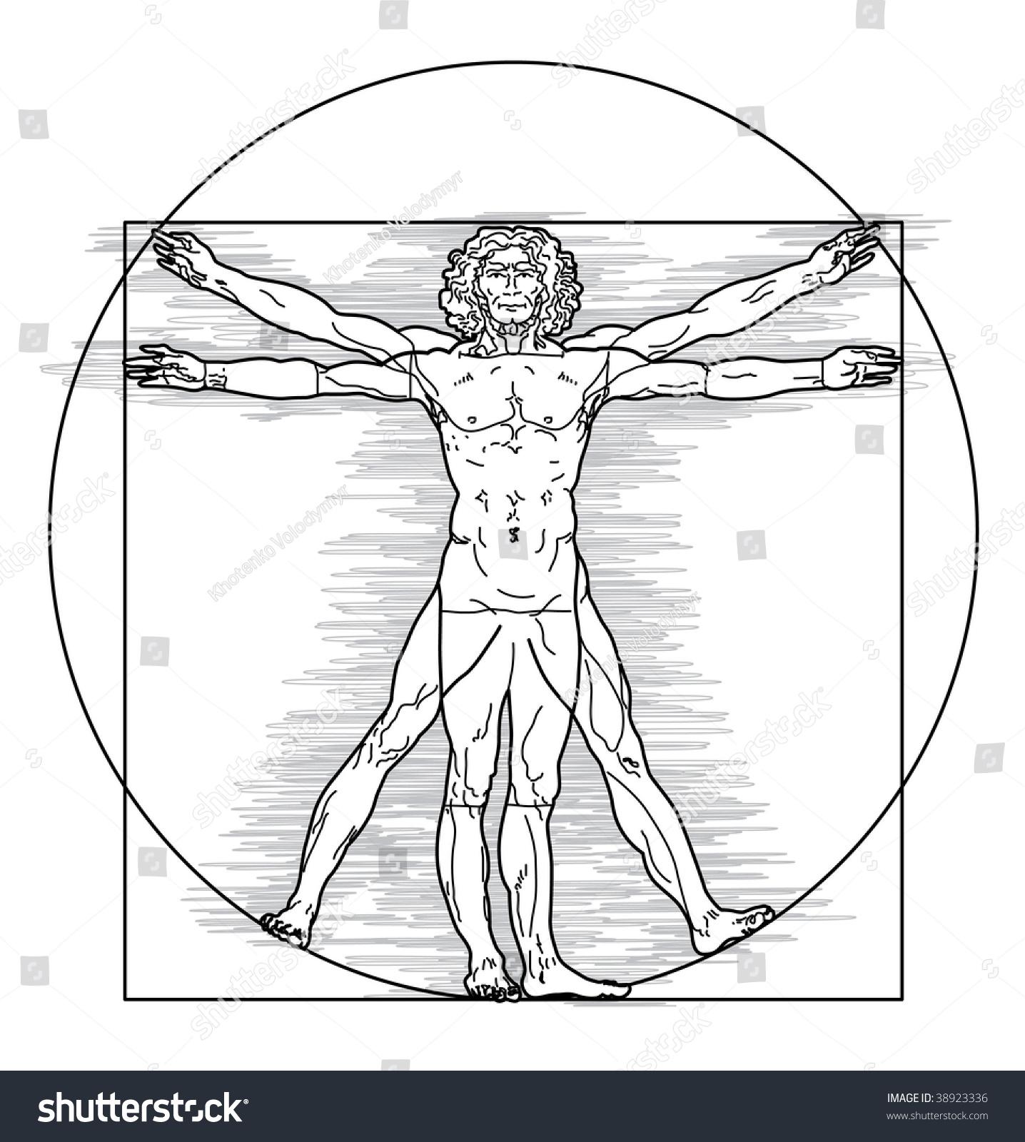 Leonardo Da Vincis Vitruvian Man Vector Stock Vector (Royalty Free ...