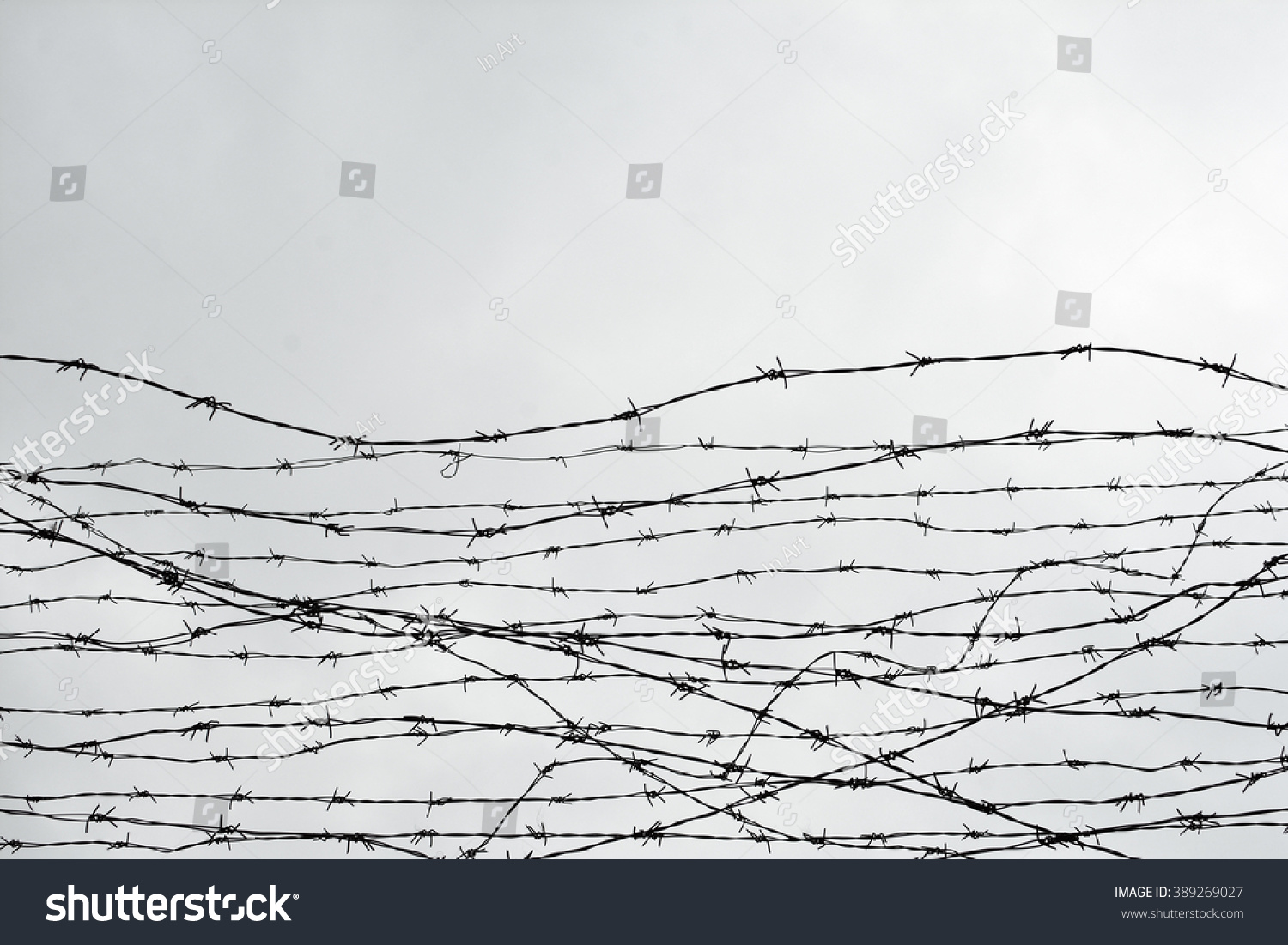 Fencing Fence Barbed Wire Let Jail Stock Photo (100% Legal ...