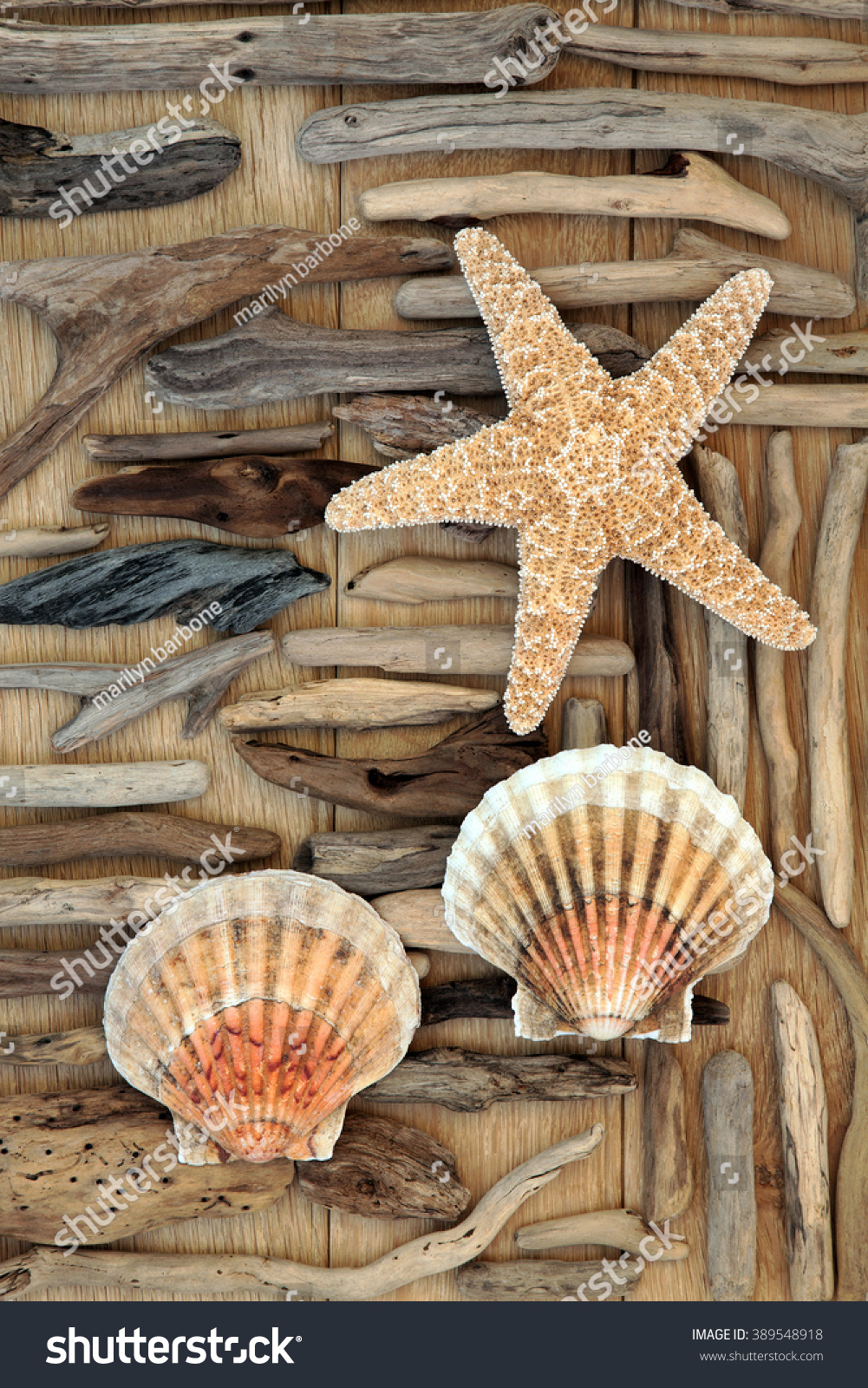 Starfish driftwood scallop shell abstract background stock photo starfish driftwood and scallop shell abstract background over oak wood biocorpaavc Image collections
