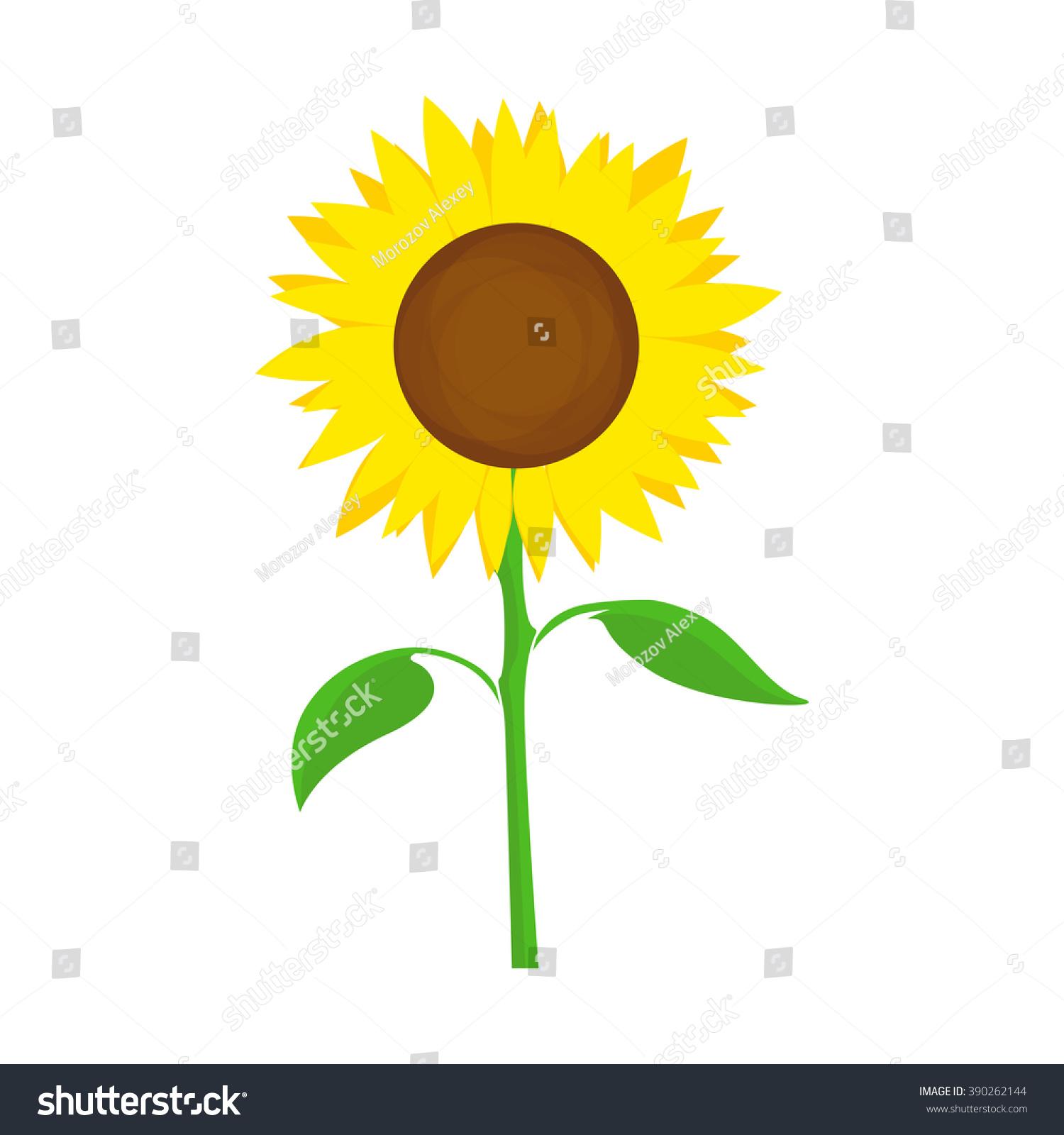 Sunflower Symbol Farm Harvest Vector Flower Stock Vector Royalty