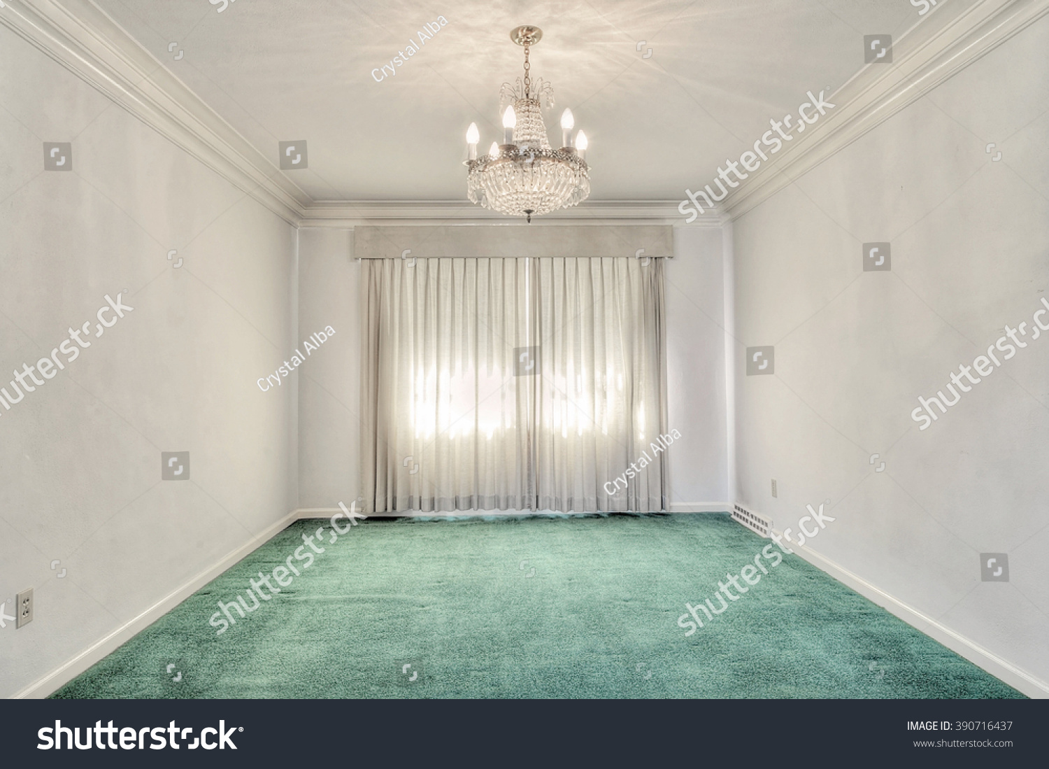 Mid Century Dining Room With Green Carpet