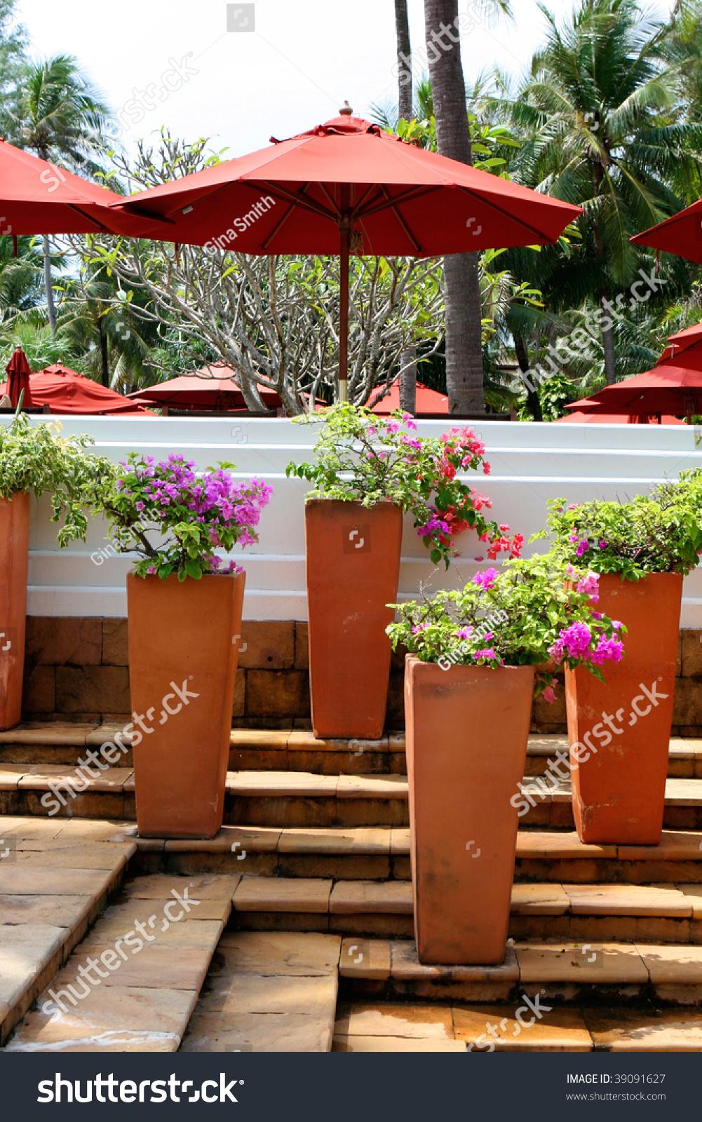 Beautiful Flower Pots Decorating Swimming Pool Transportation Stock Image 39091627