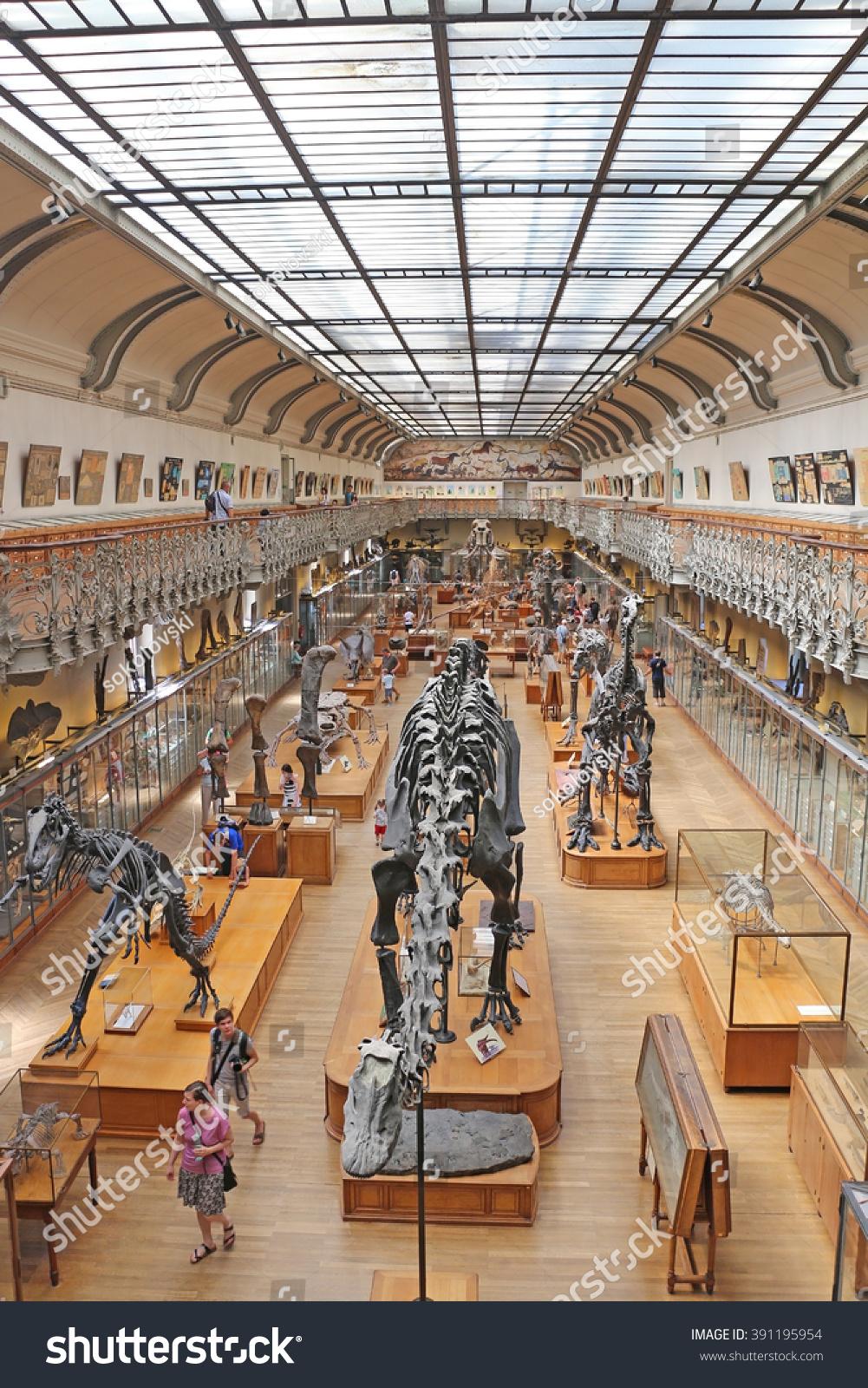 Gallery Paleontology Comparative Anatomy Paris August Stock Photo ...