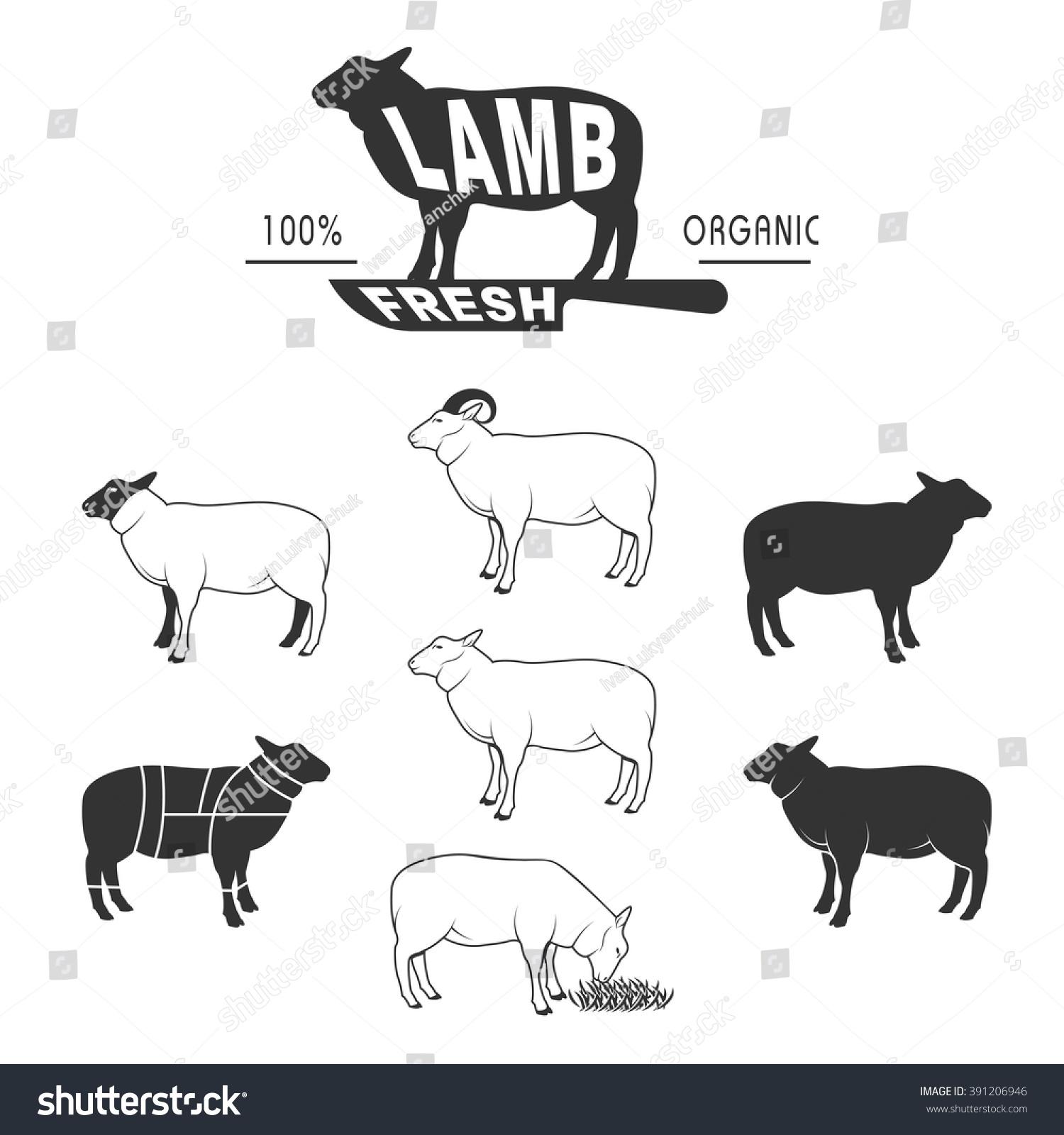 Vector Sheep Icon Set Sheep Silhouette Stock Photo (Photo, Vector ...