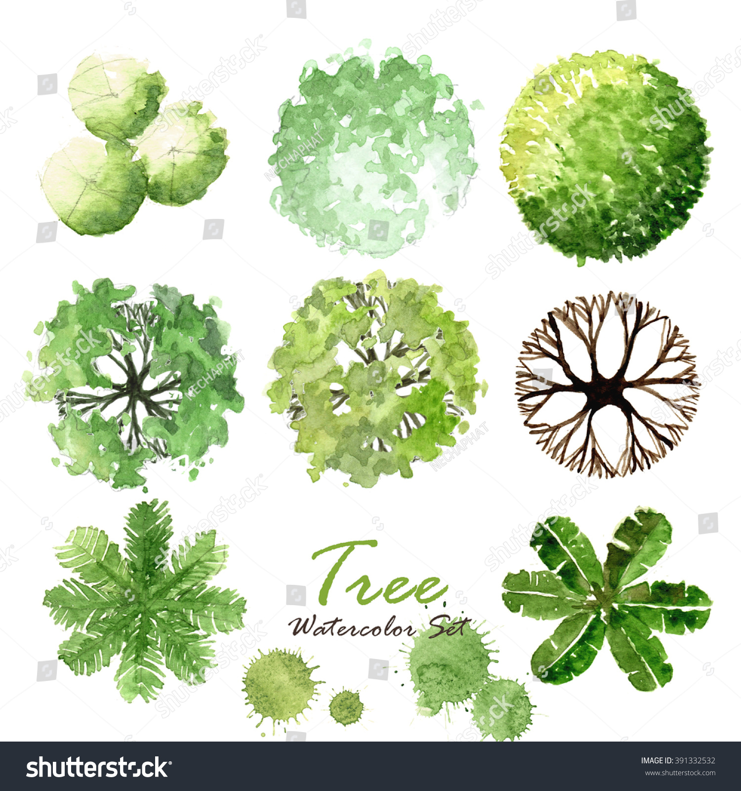 Simple Tagstree Plan Vectors Photos And Psd Files Free Vector Download With Tree View