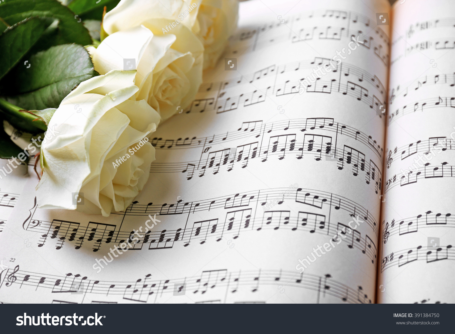 Beautiful Rose On Music Sheets Background Stock Photo 100 Legal
