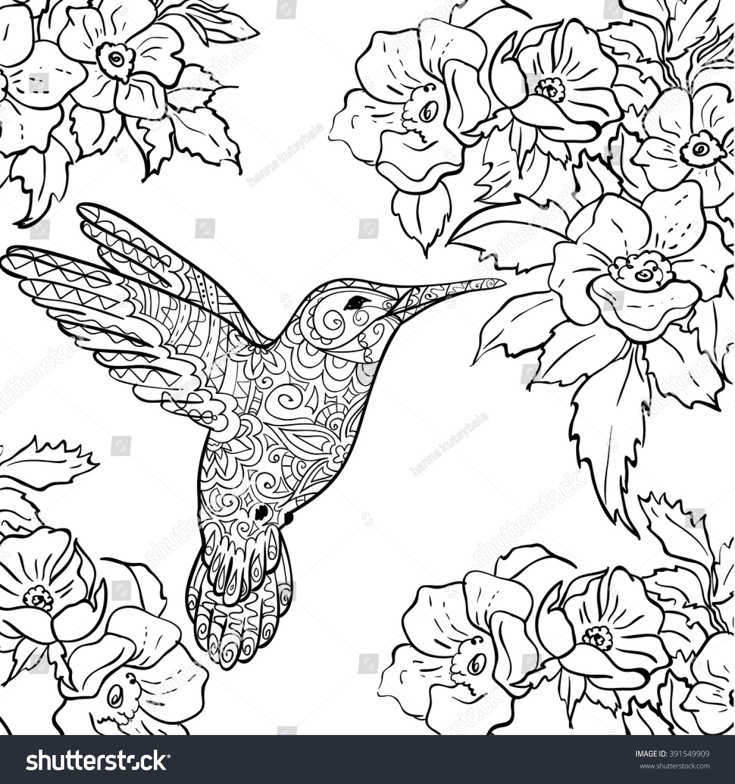 hummingbird coloring pages black chinned hummingbird eat nectar