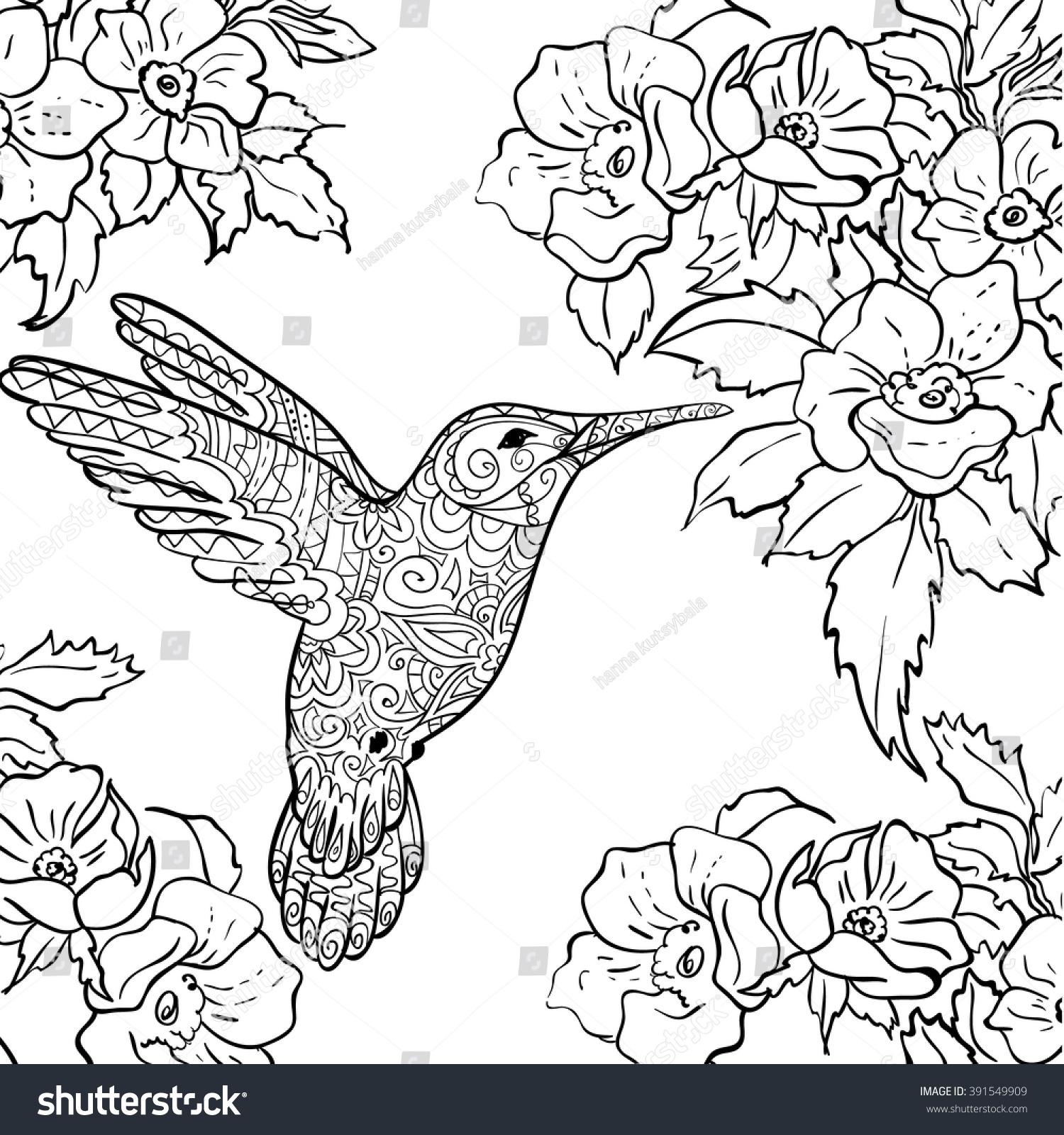 sketch hummingbird flying around flowers full stock vector