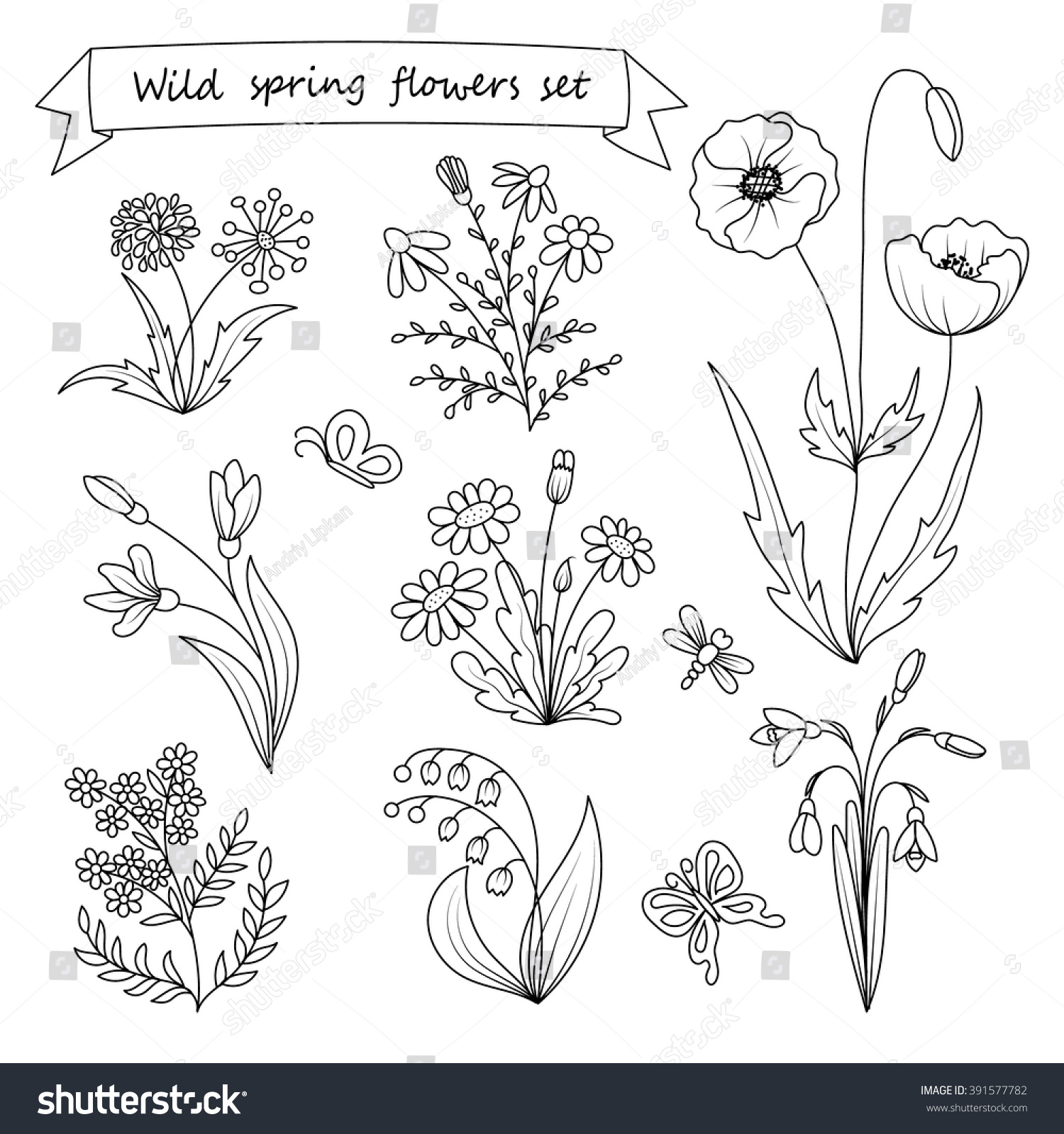 Set Of Hand Drawn Wild Spring Flowers Coloring Book Page Vector Illustration Botany