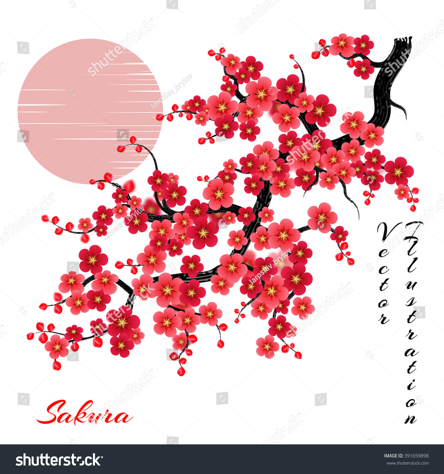 Elegant Soft Red Color Cherry Flowers Stock Photo (Photo, Vector ...
